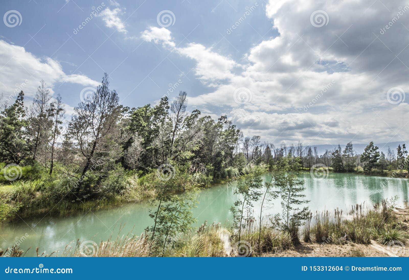 Lago verde com um céu azul e árvores verdes