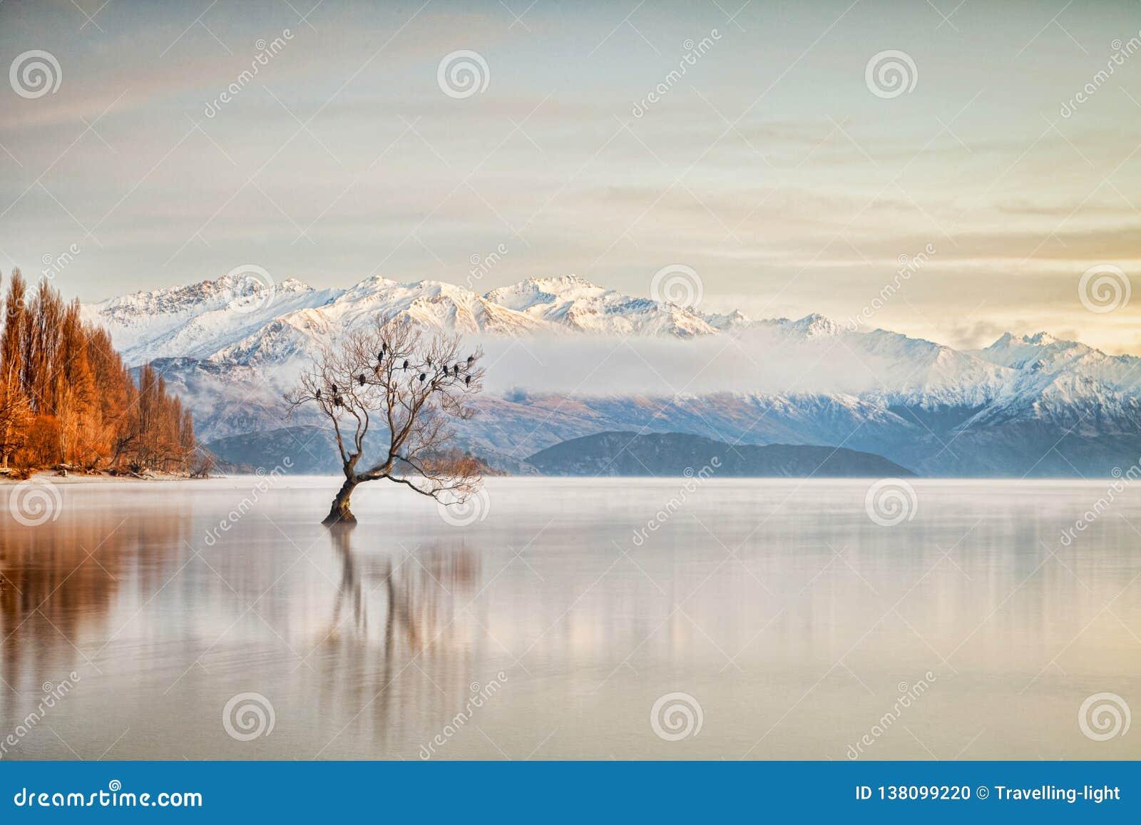 Lago Wanaka Otago Nueva Zelanda