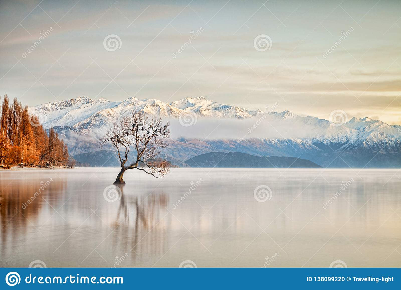 Lago Wanaka Otago Nuova Zelanda