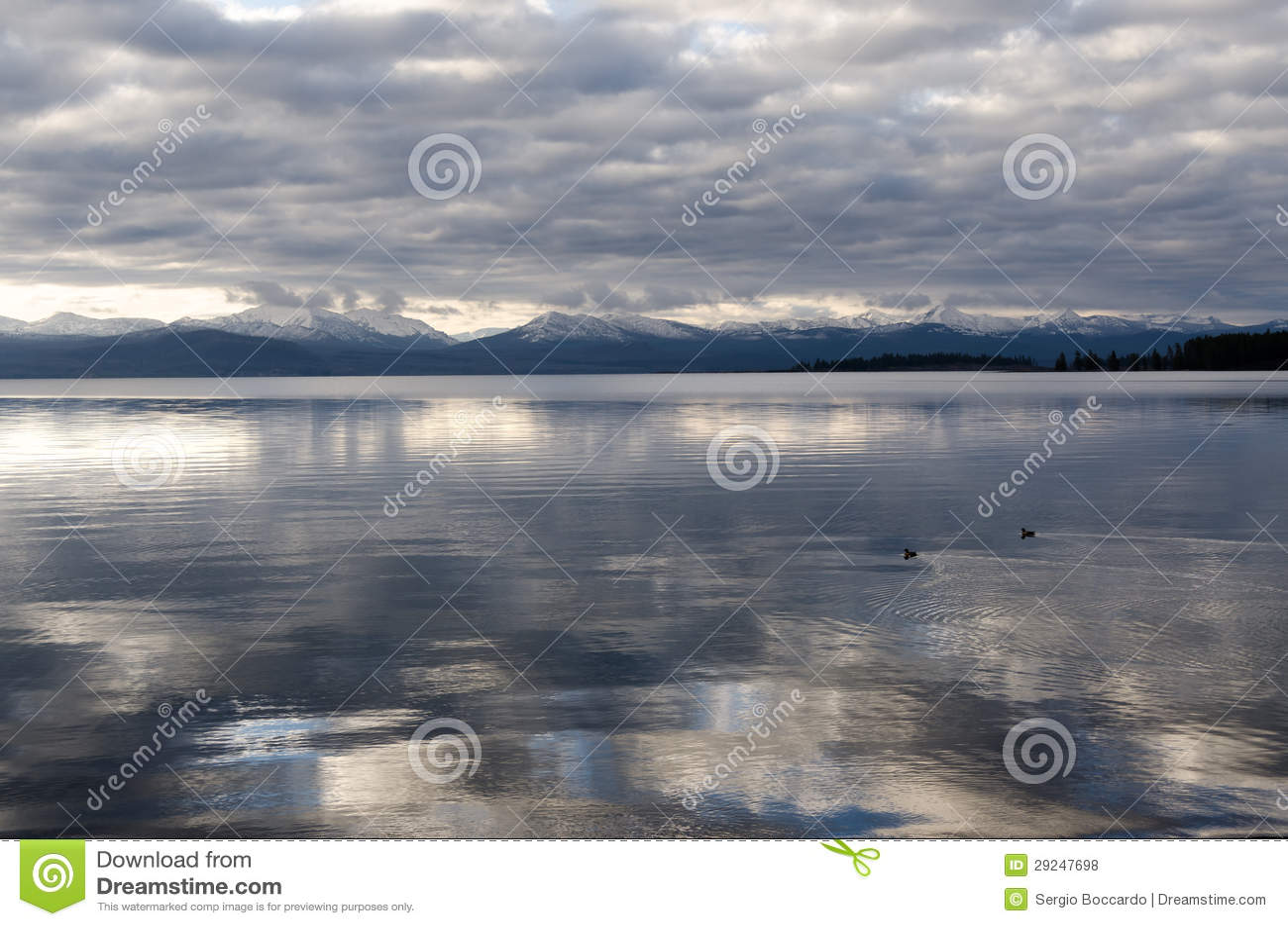 Download Lago Yellowstone foto de stock. Imagem de naturalizado - 29247698