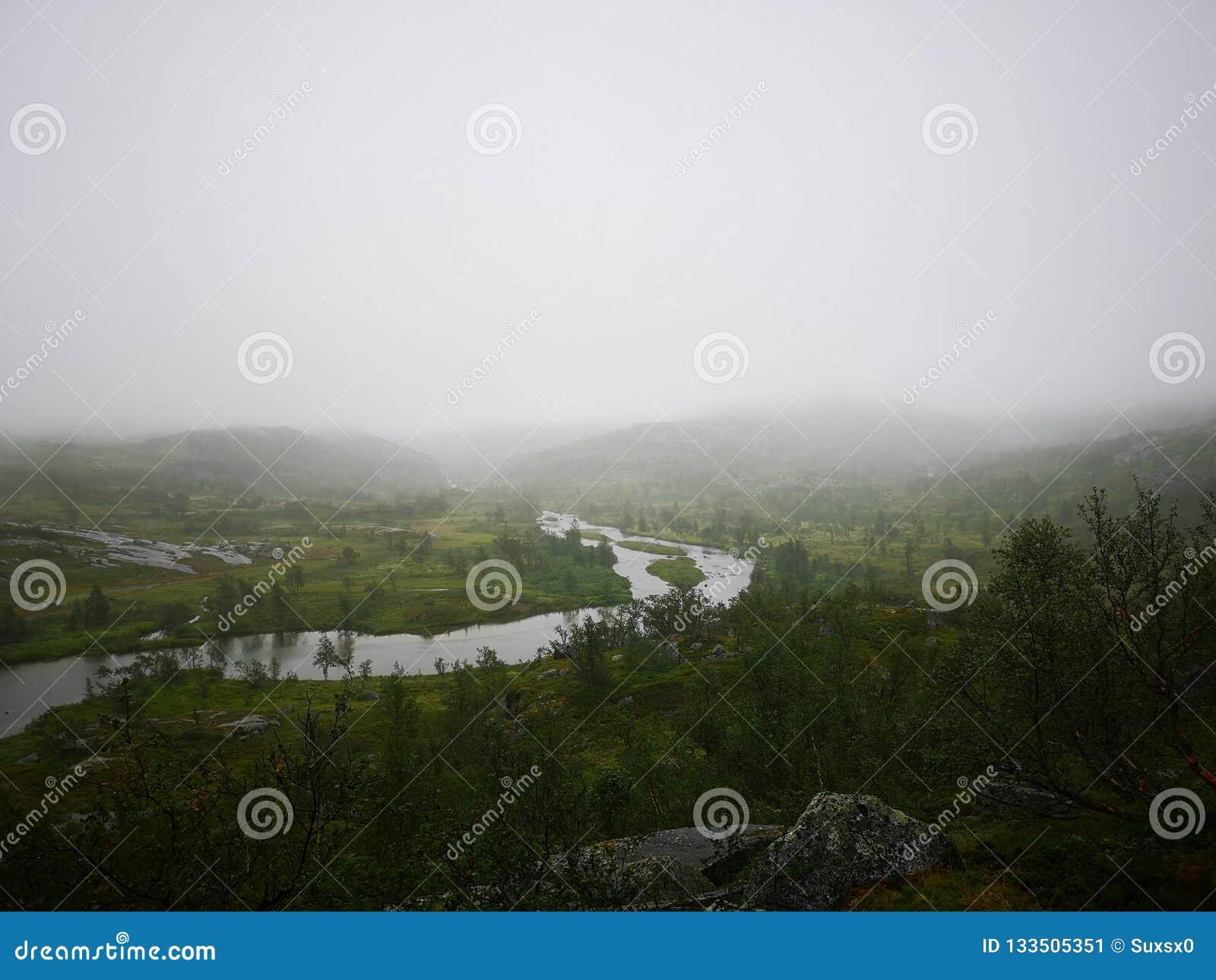 Lago zen com névoa
