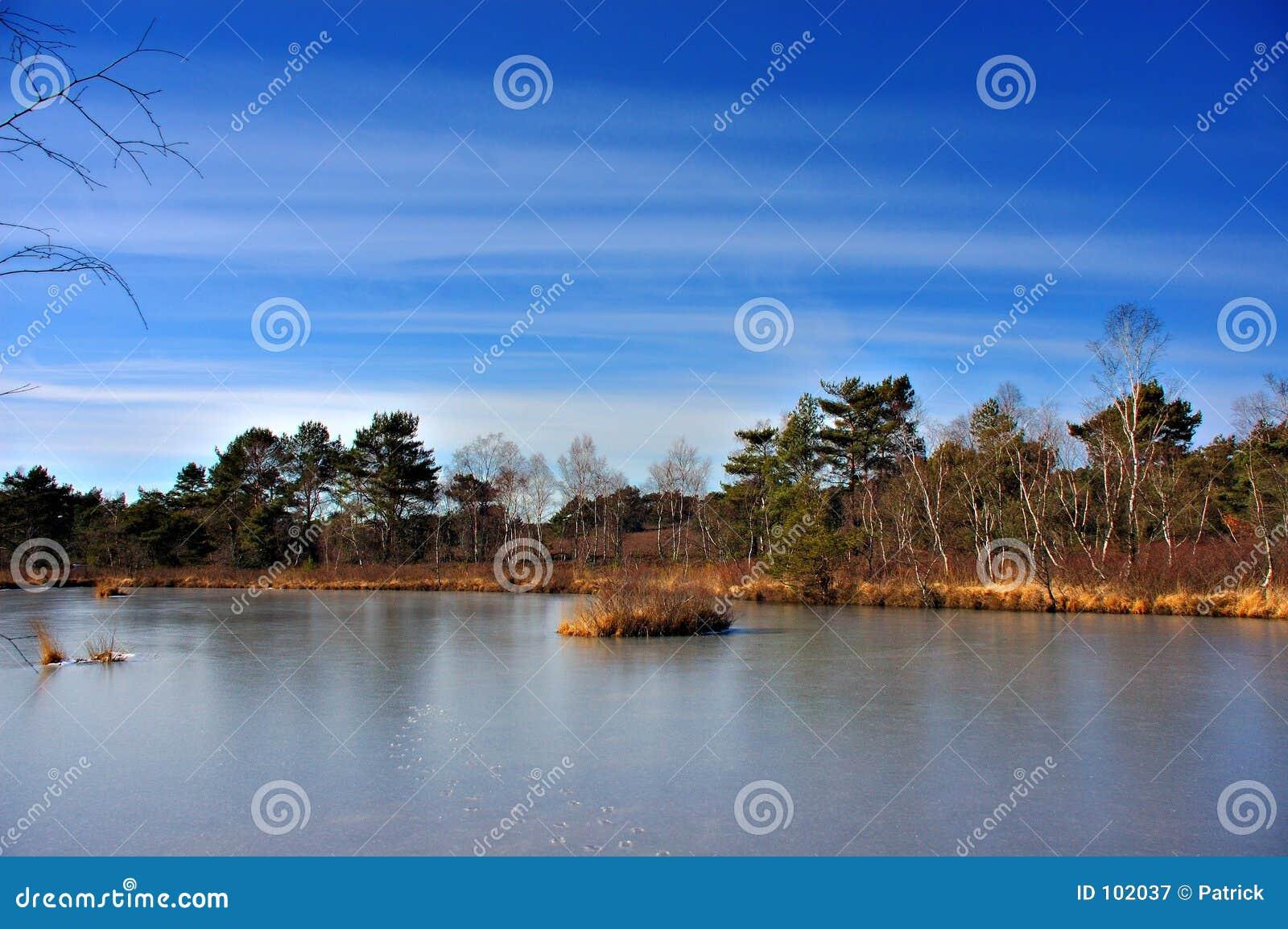 A lagoa congelada.