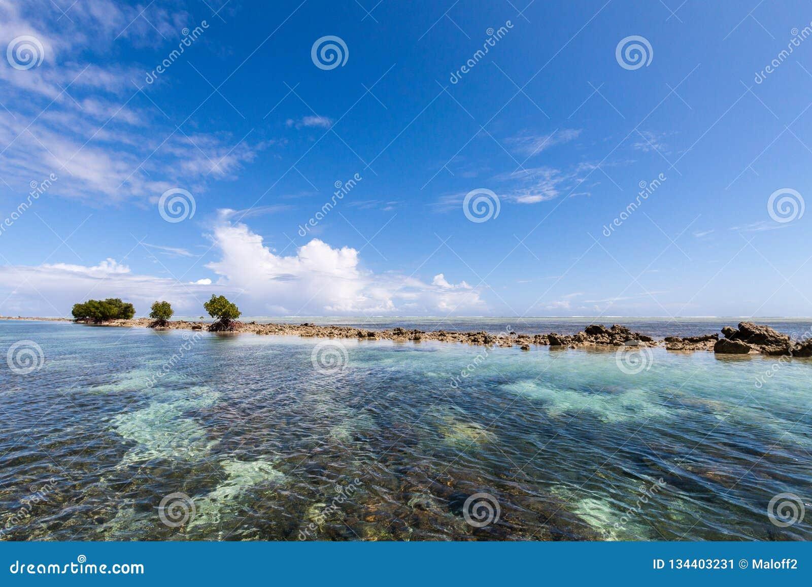 Lagoa do azul de turquesa dos azuis celestes, motu desinibido pequeno da ilha do recife completamente de rochas e de árvores peri