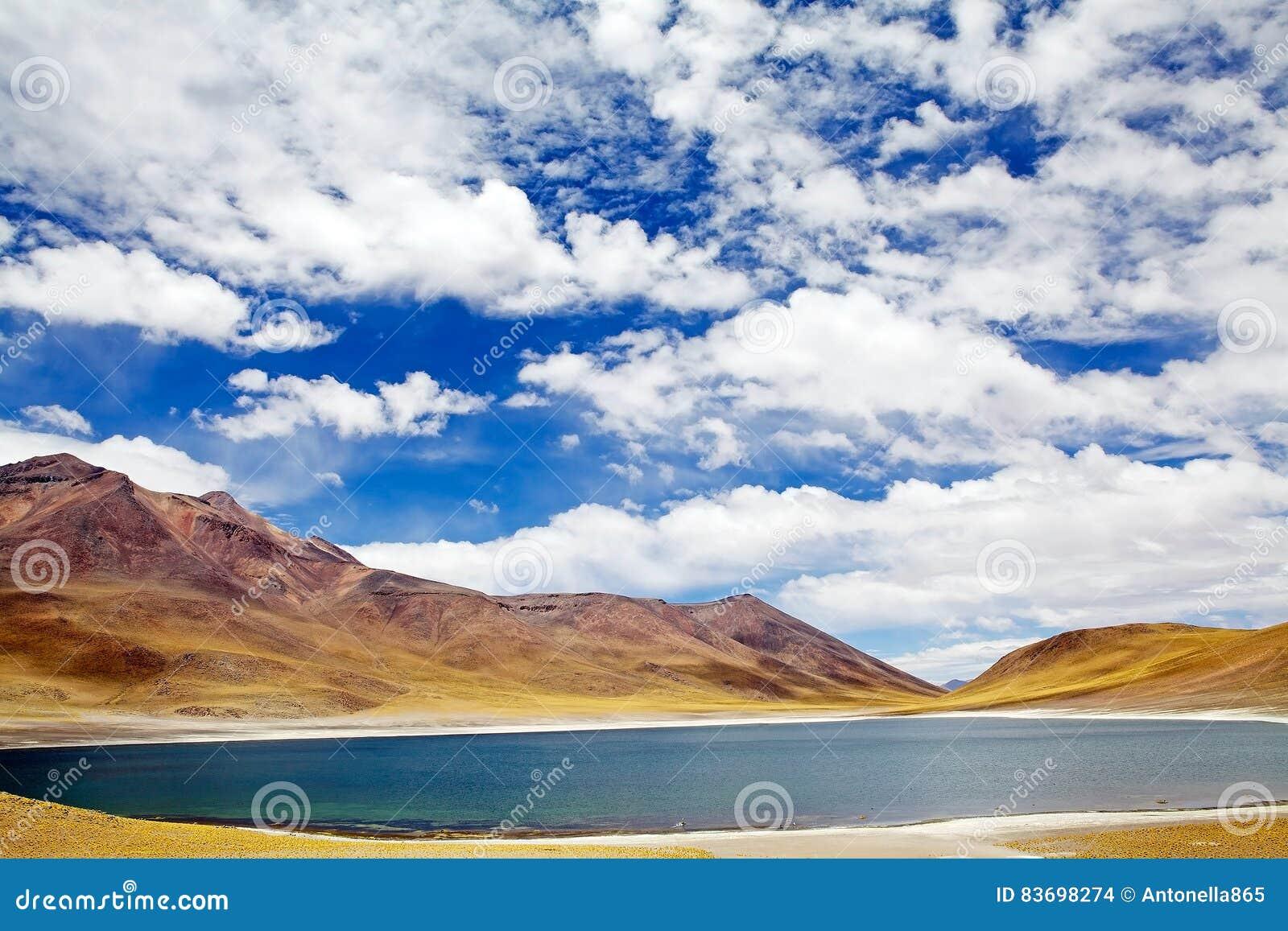 Lagoa no deserto de Atacama, o Chile de Miniques