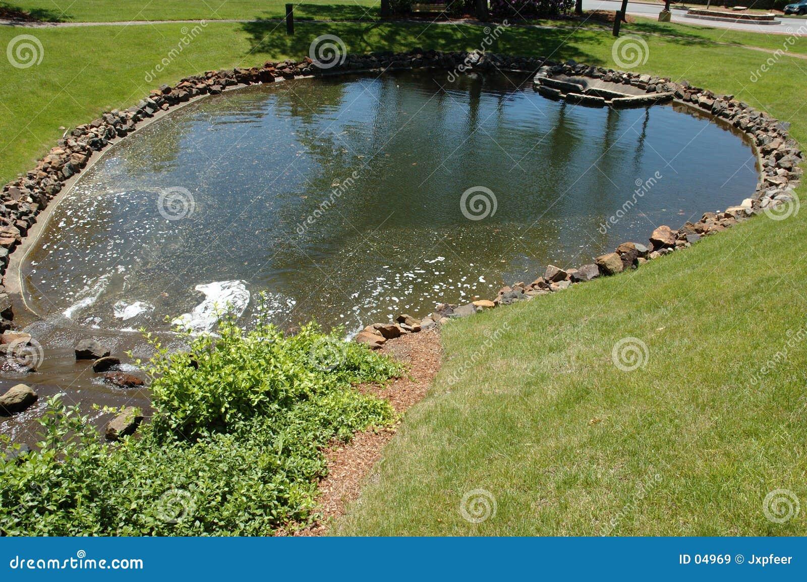 Lagoa no parque