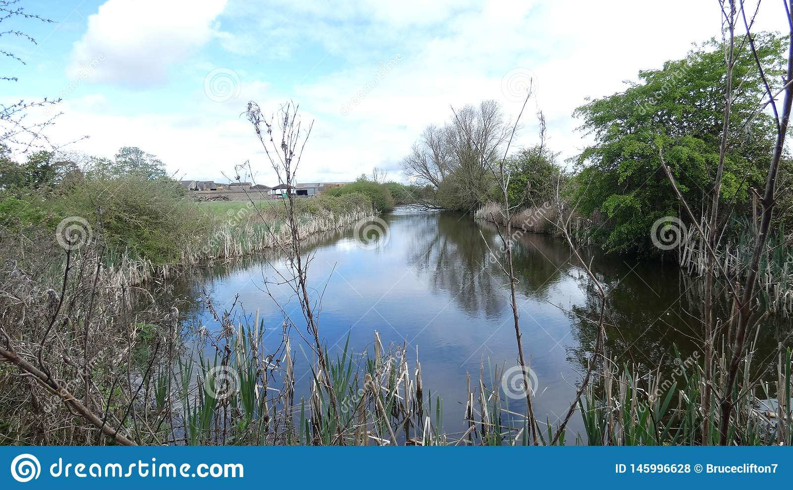 Lagoa secreta um lugar romântico na floresta