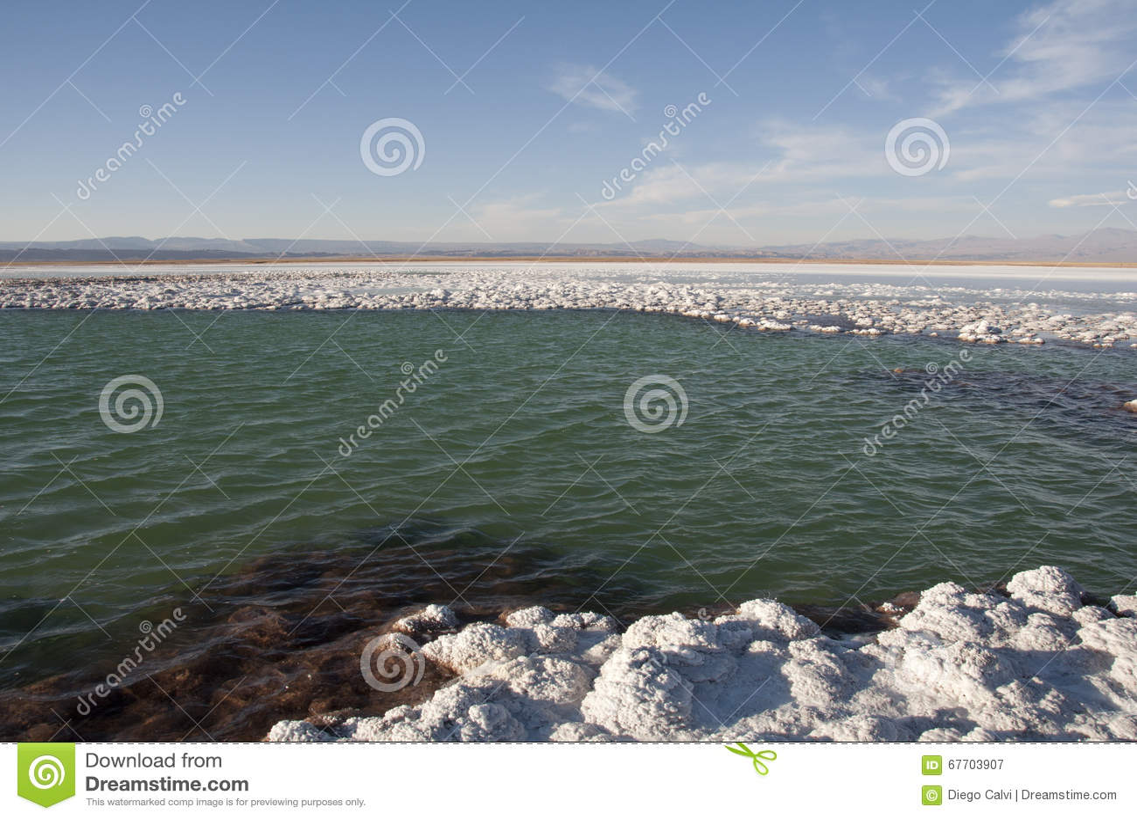 Lagoon saltwater, Chile