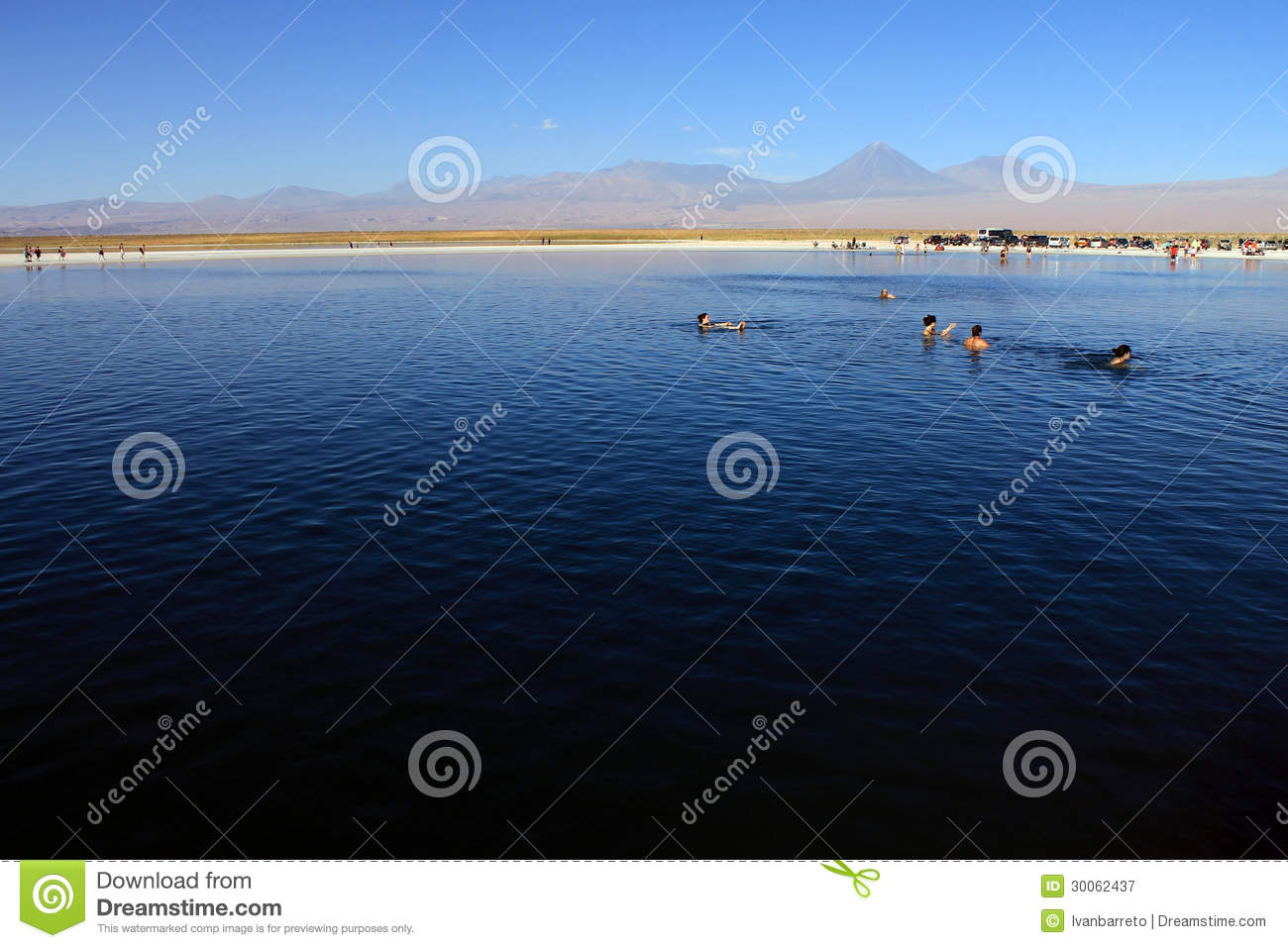 The Laguna Cejar, Chile editorial photography. Image of ...
