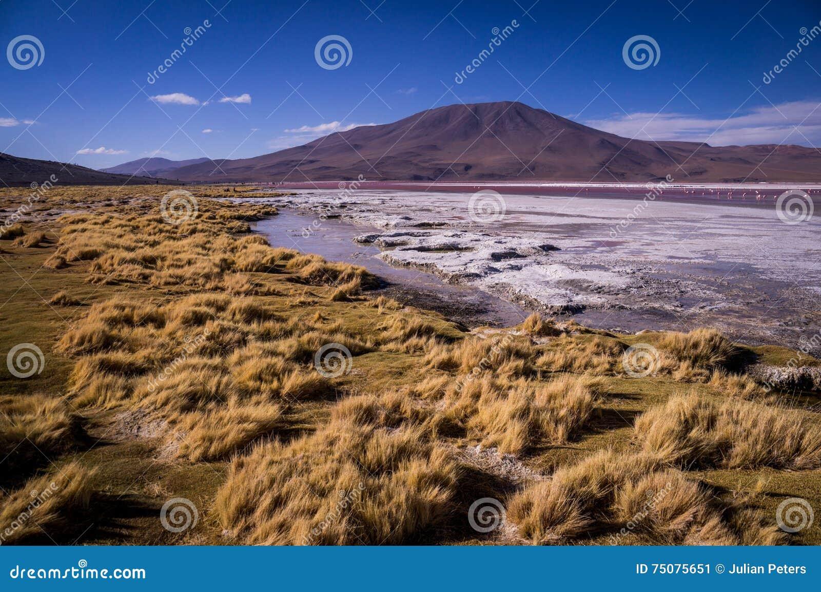 Laguna Colorada auf Bolivianer Altiplano