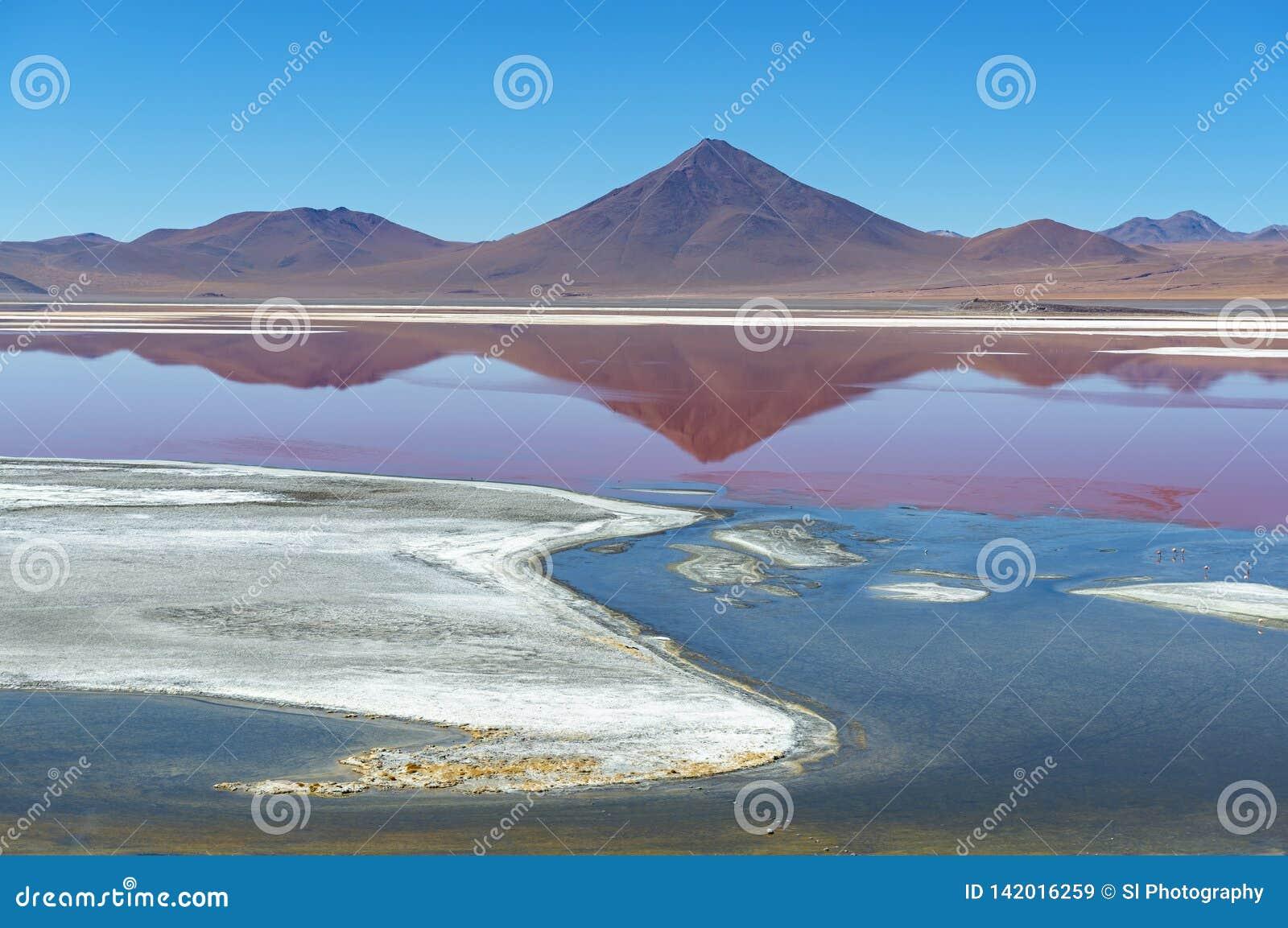 Laguna Colorada Landschap in de Bergen van de Andes van Bolivië