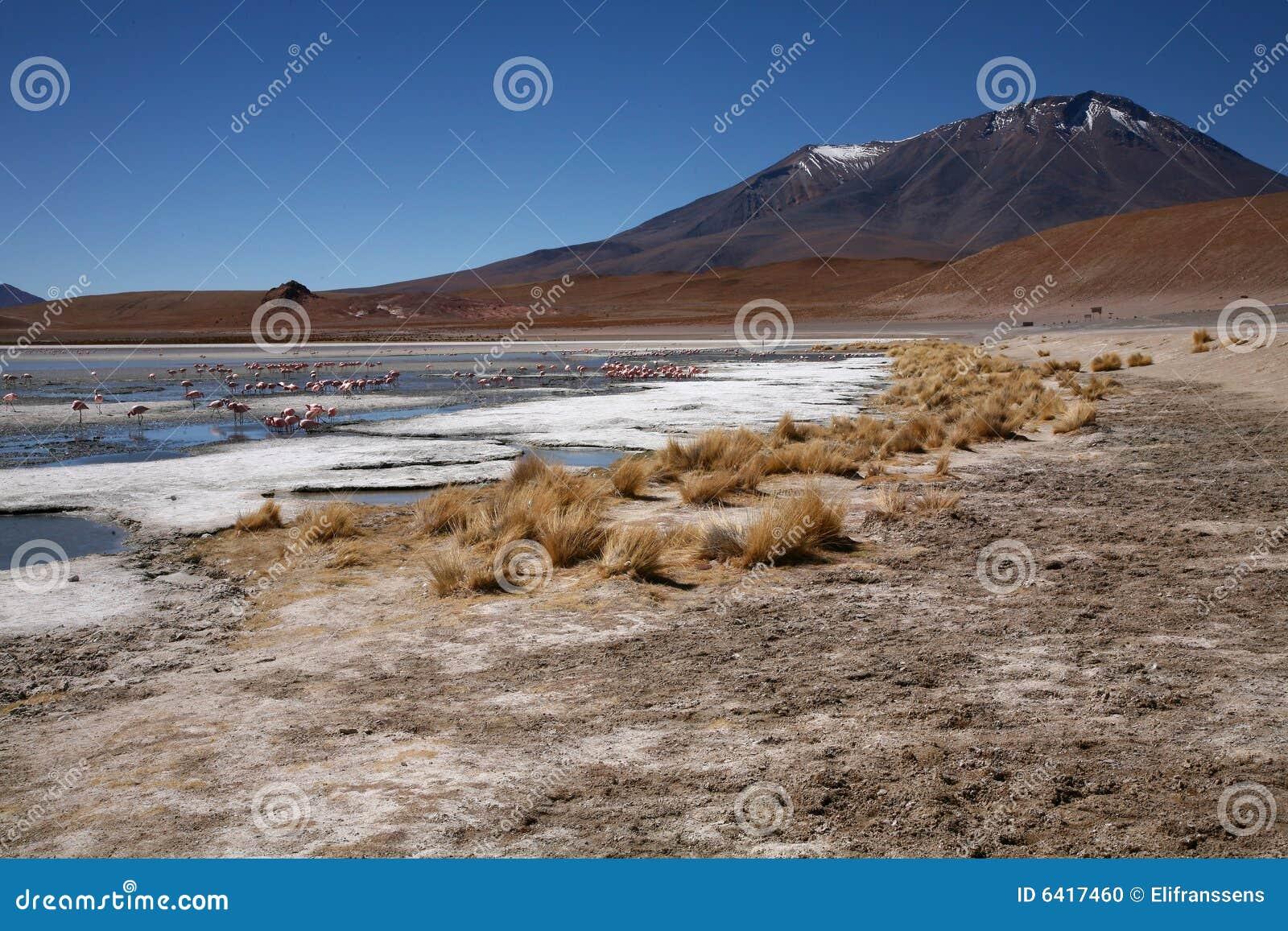 Laguna en Bolivia