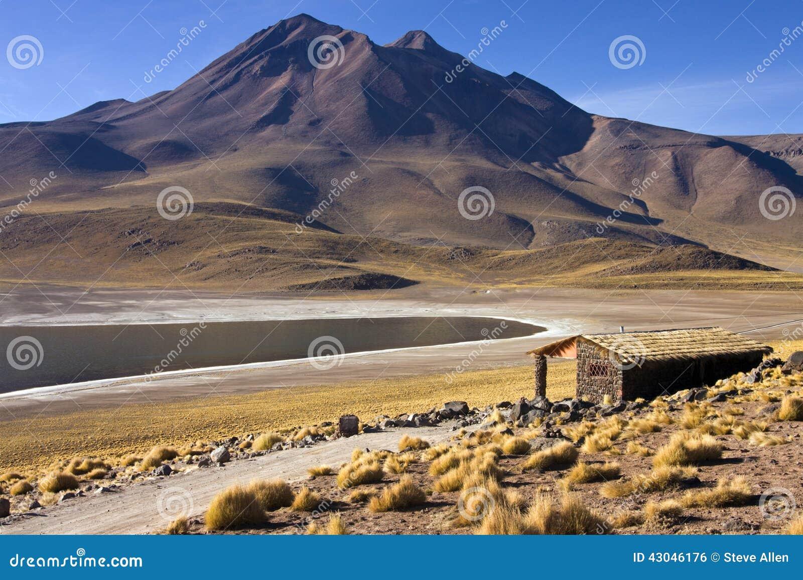 Laguna Miscanti en las altas montañas de los Andes en el Atacama Deser