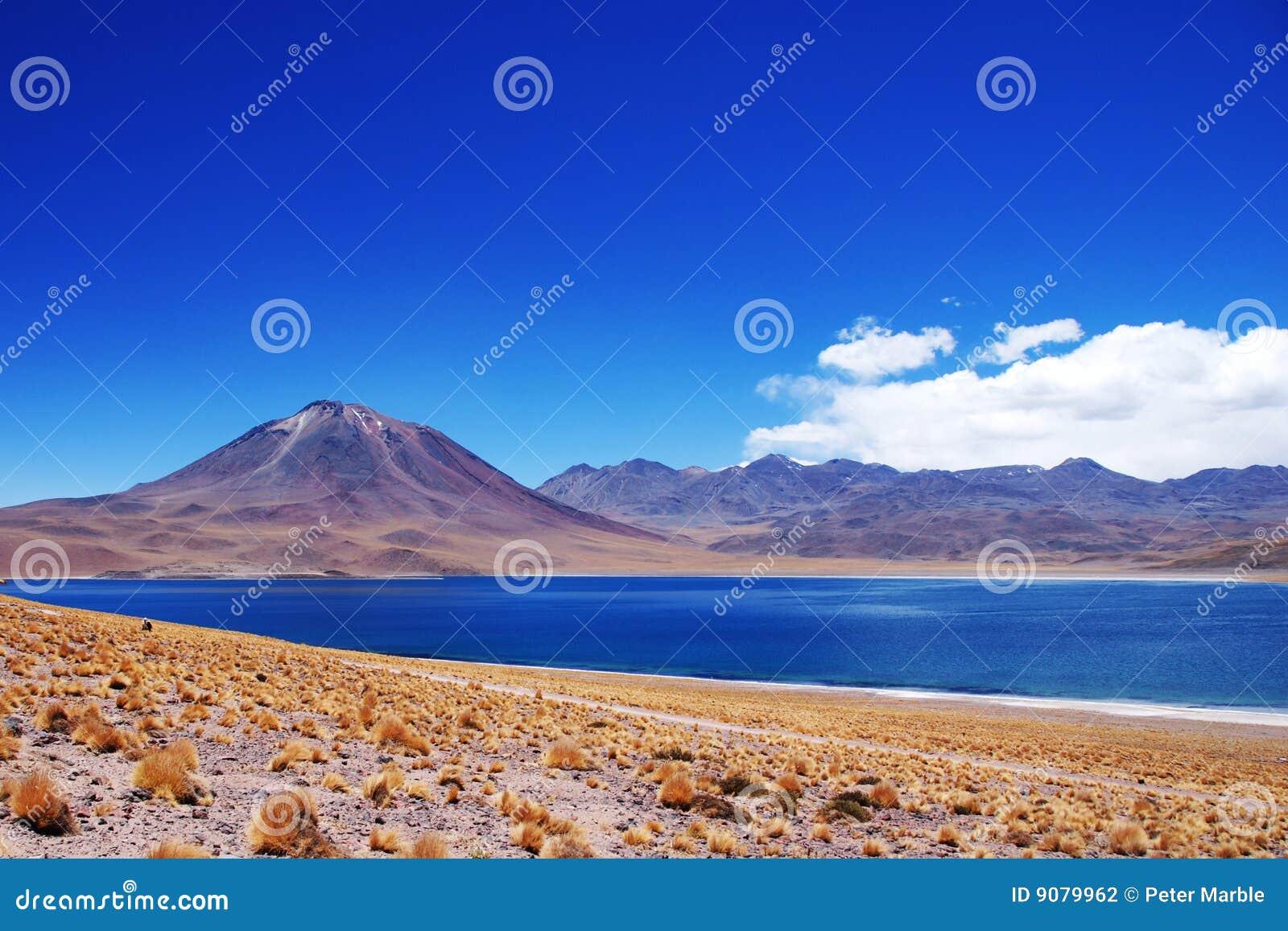 Laguna Miscanti und Volcan Miniques
