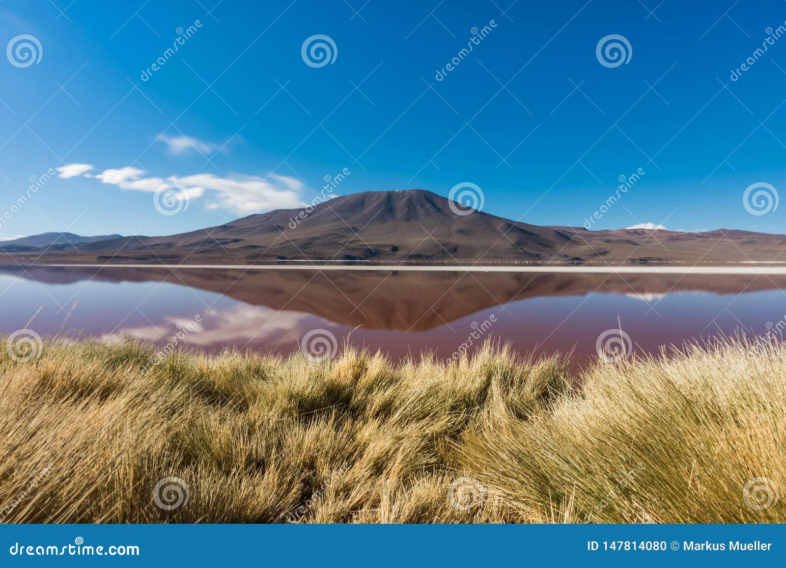 Laguna Roja, lago de sal com reflexão da montanha, reserva de Eduardo Avaroa Andean Fauna National, Bolívia