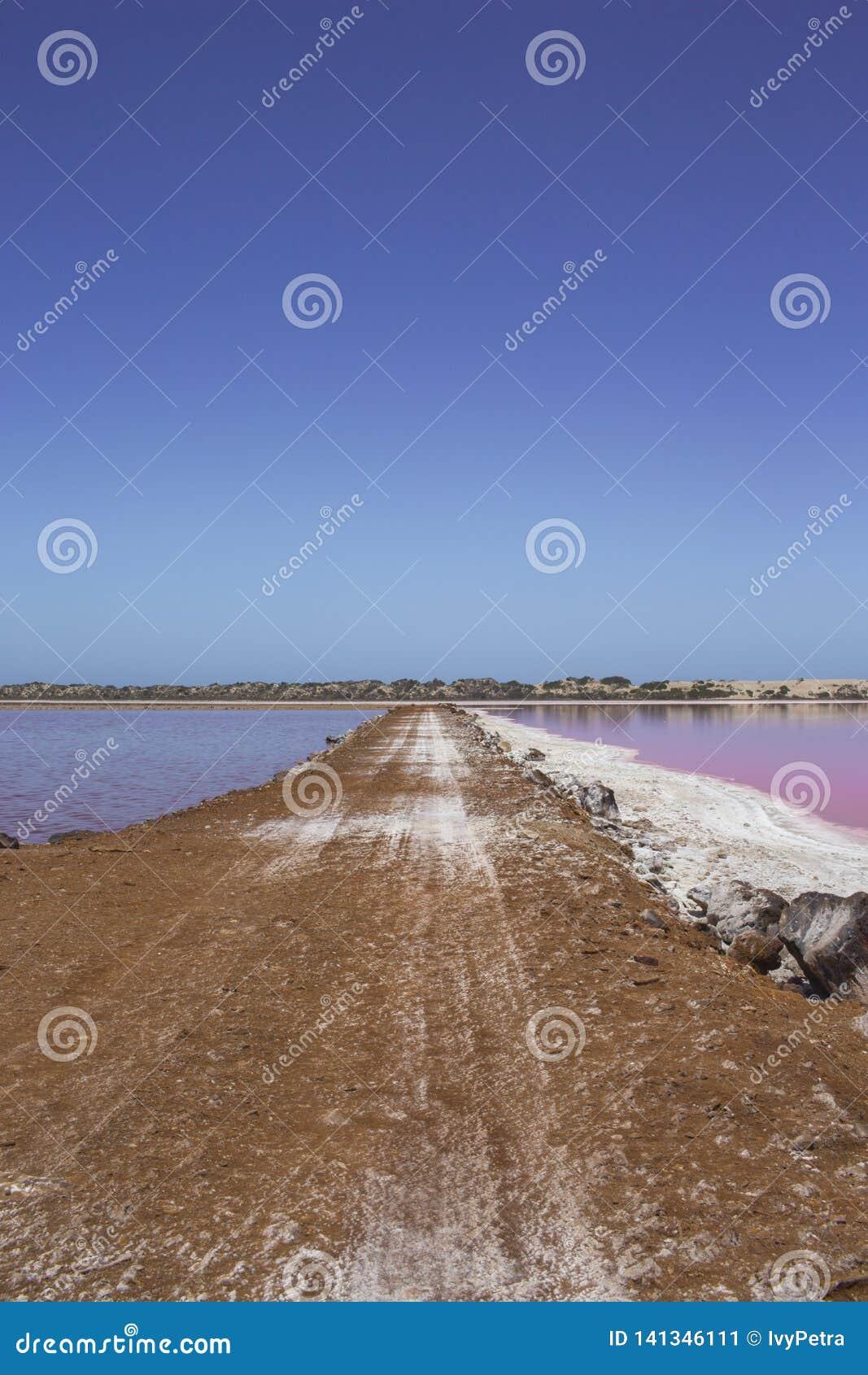 Laguna rosa della capanna del lago a porto Gregory, Australia occidentale, Australia