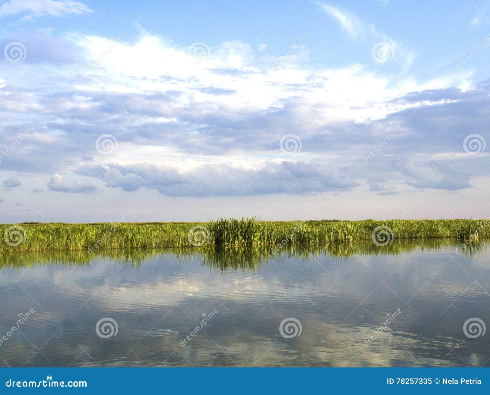 Lagune de delta de Danube