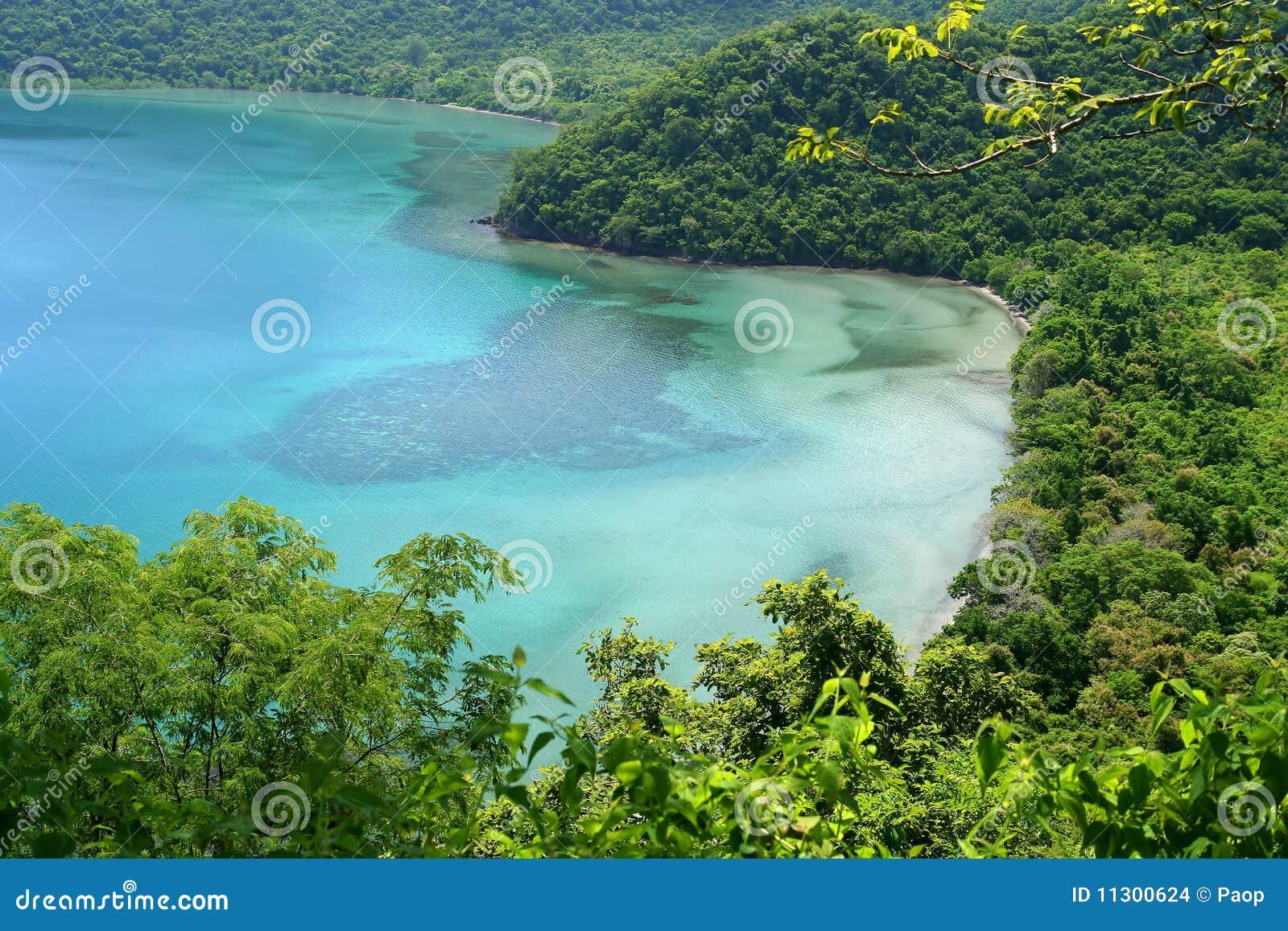 Lagune im Dschungel