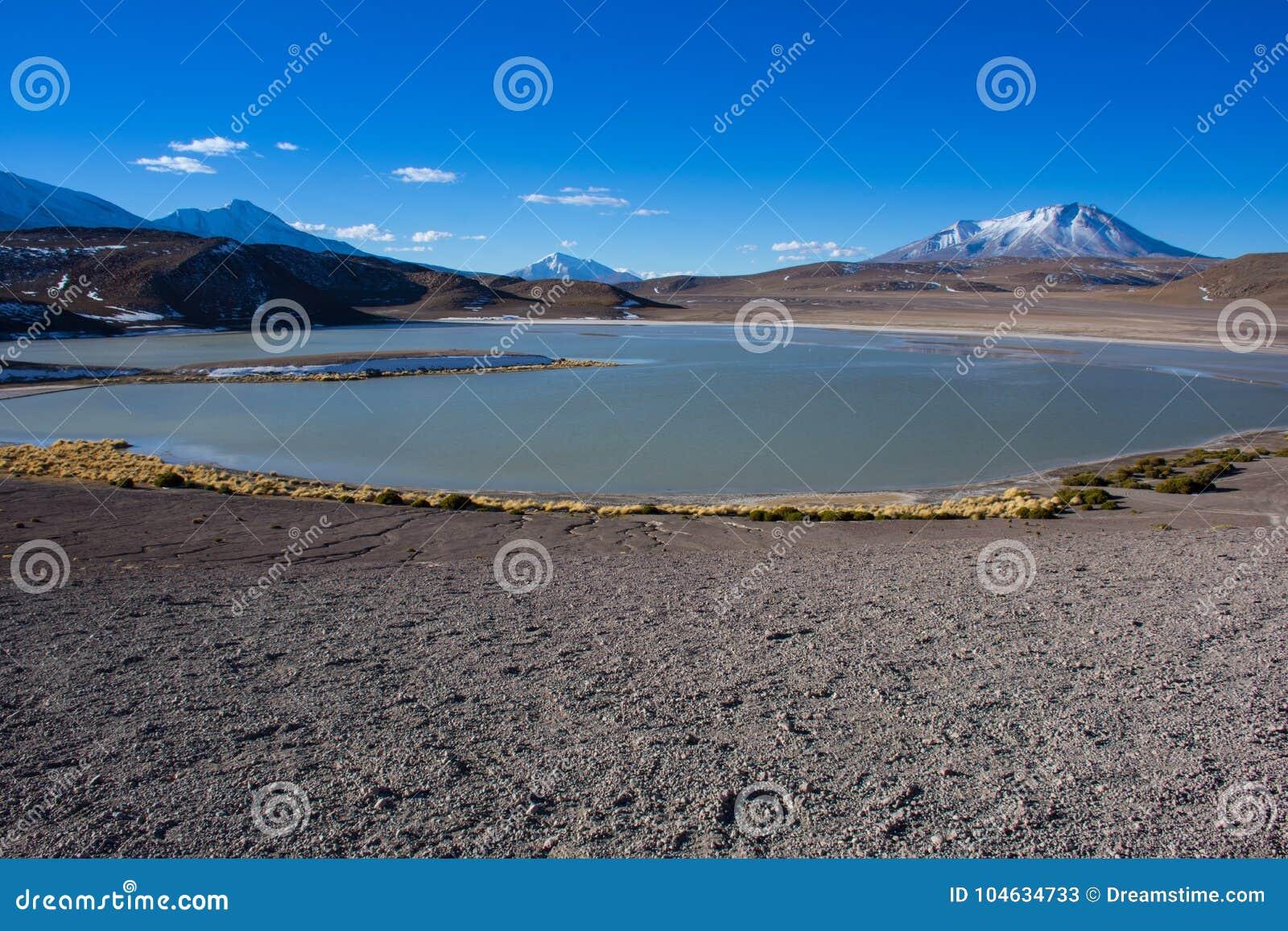 Download Lagune stinkend Bolivië stock afbeelding. Afbeelding bestaande uit toerist - 104634733
