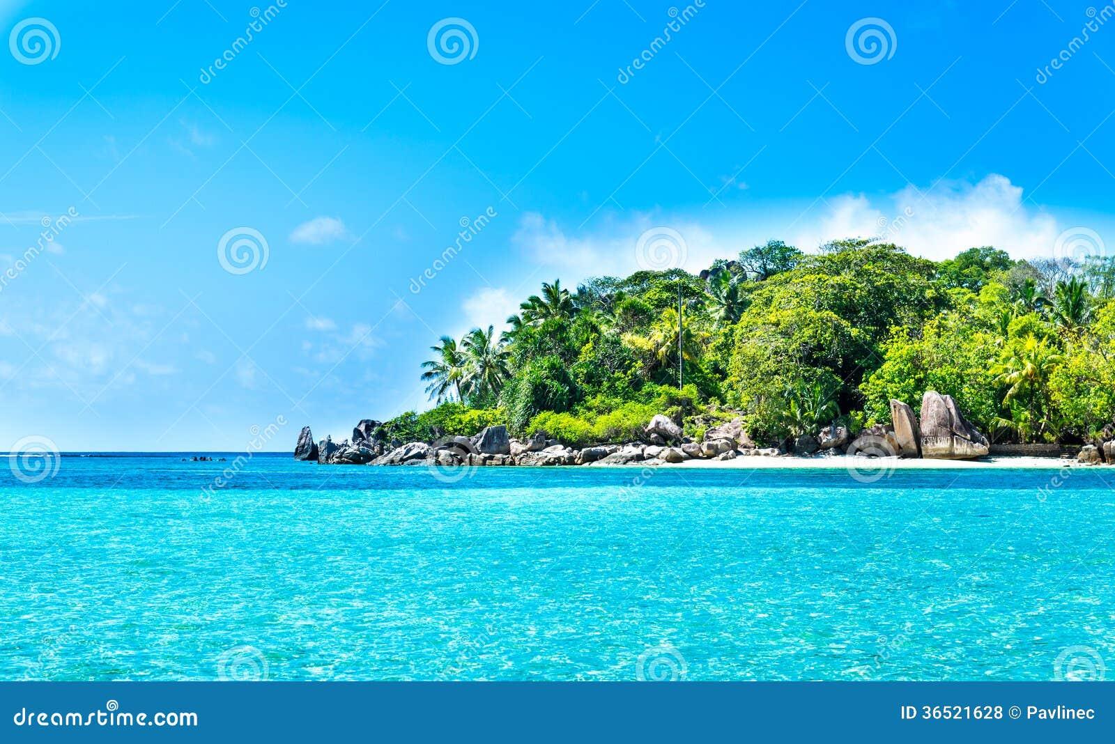 Lagune tropicale avec l île