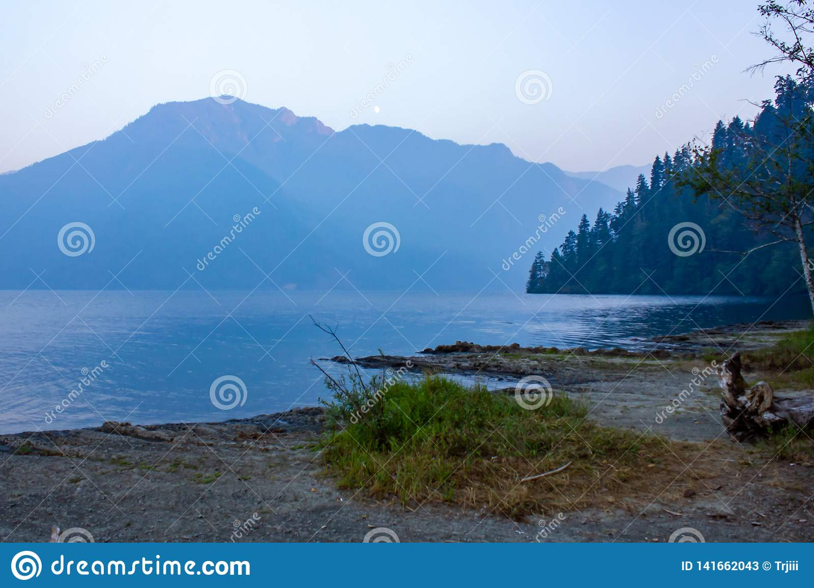 Green forest along side deep blue lake waters