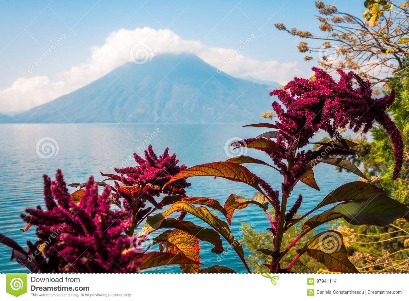 Lake, flowers and volcano in Guatemala