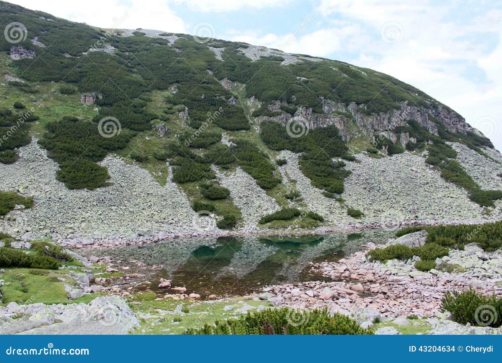 Download Lake i det Rila berg arkivfoto. Bild av frihet, gräs - 43204634