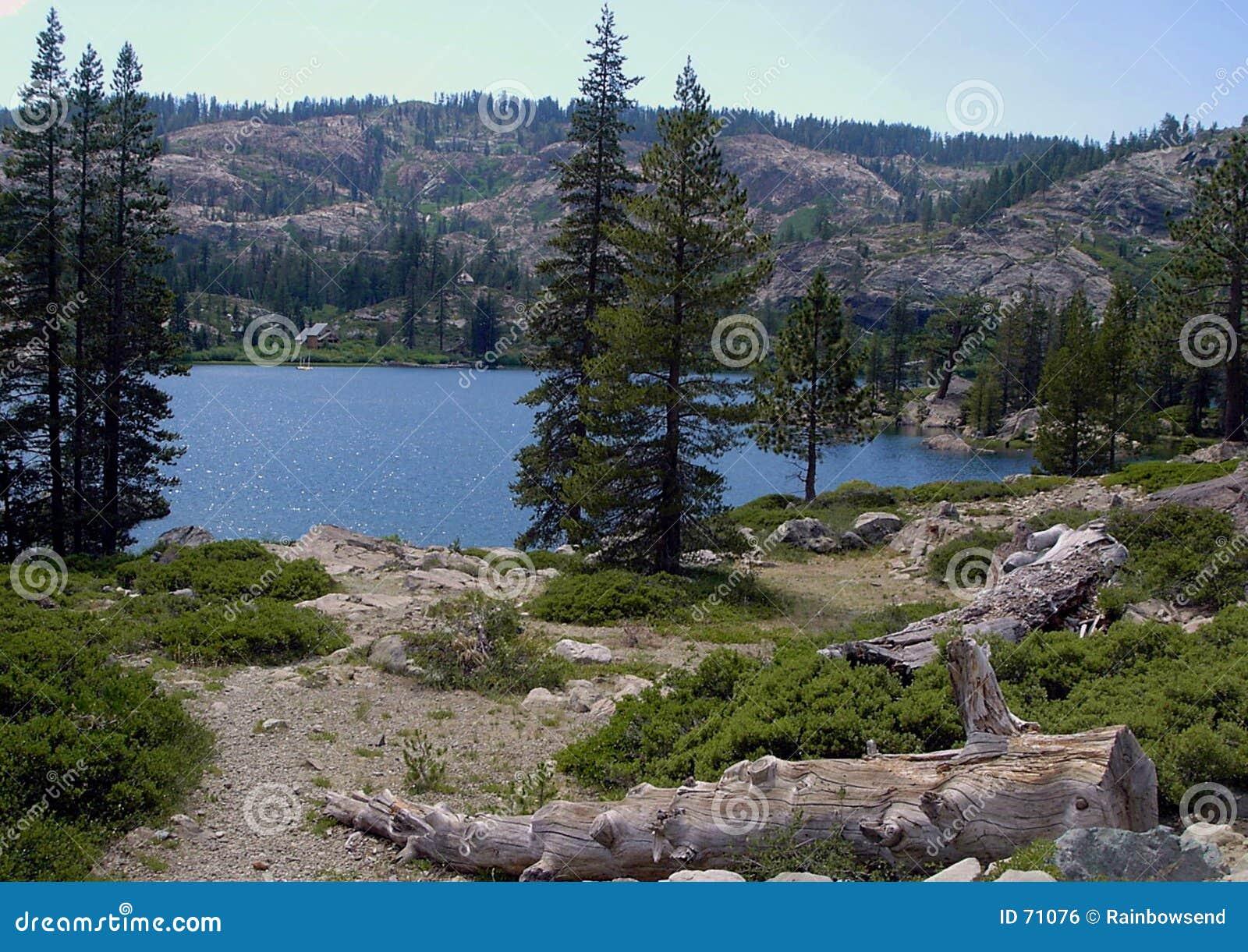 Lake with log