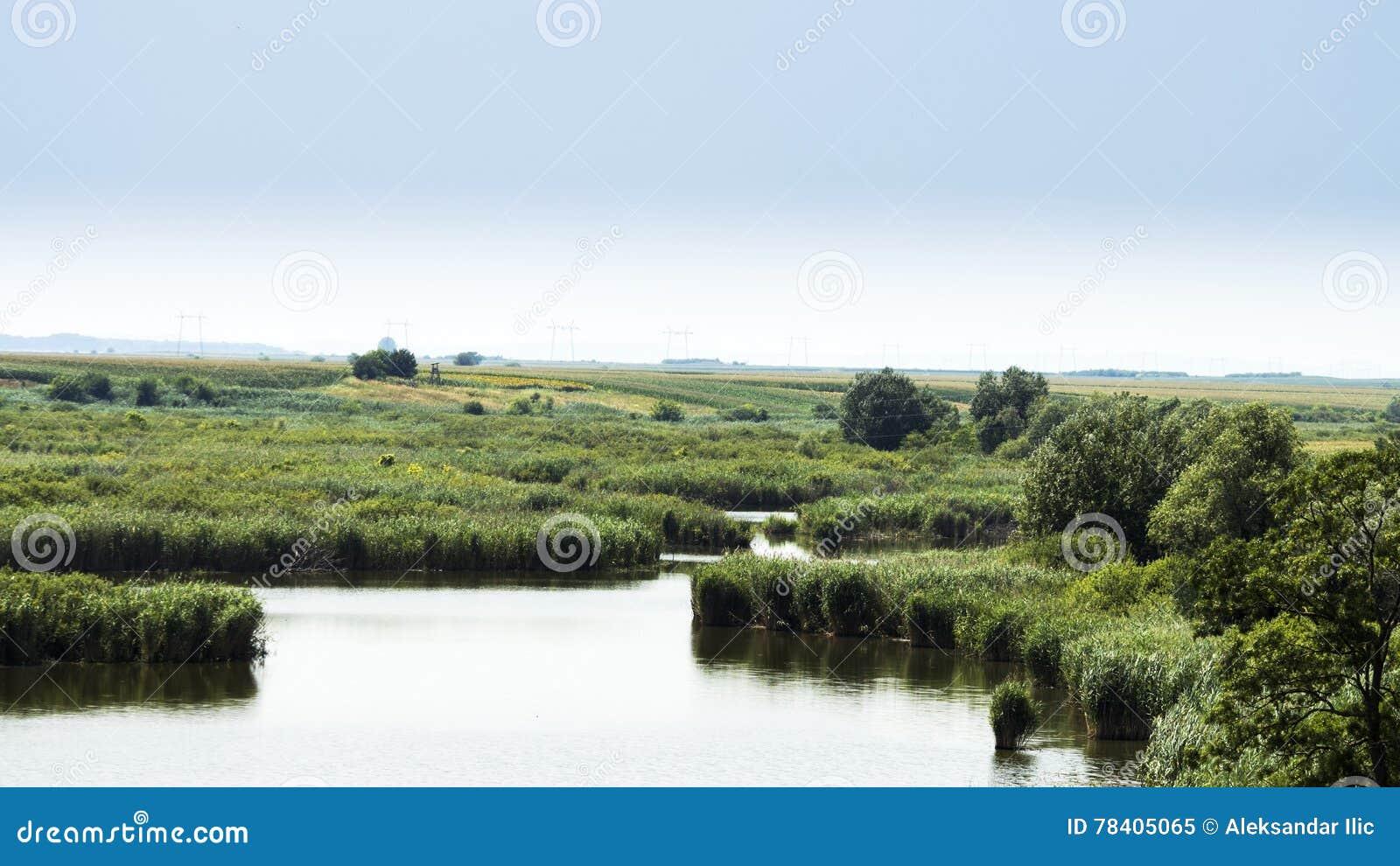Lake och äng