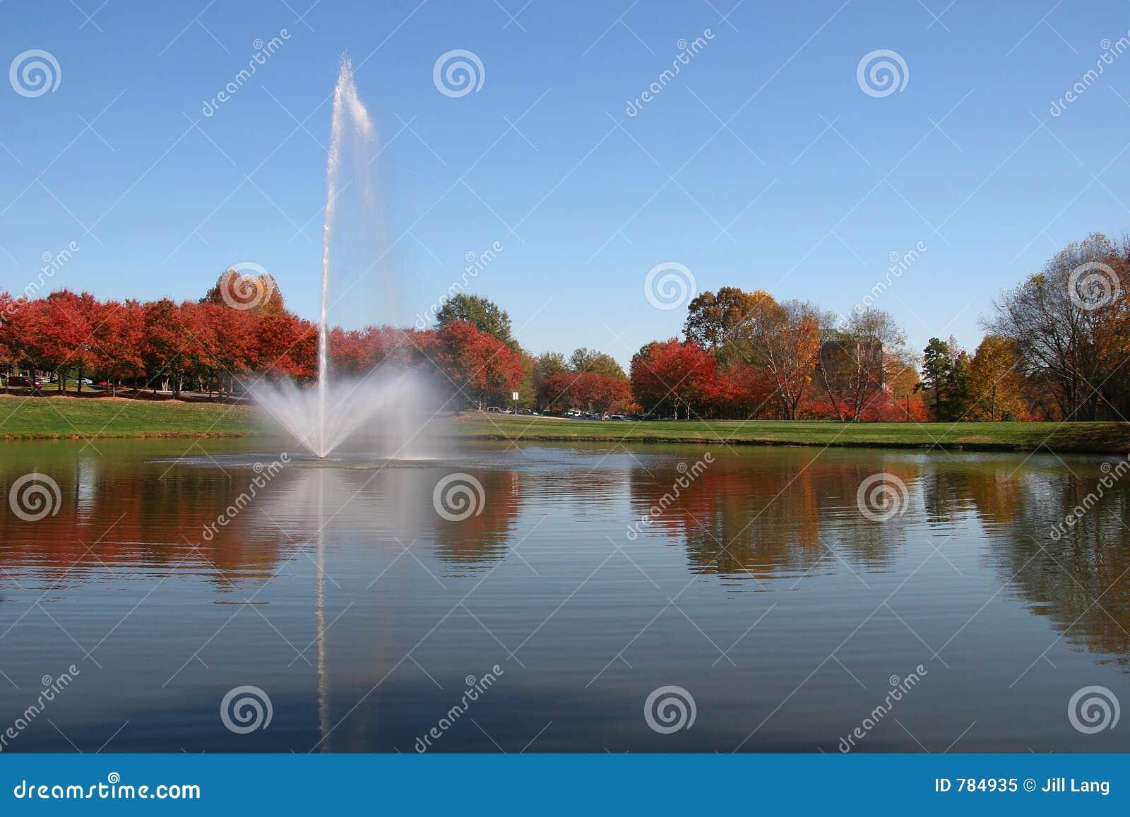 Lake at the Office