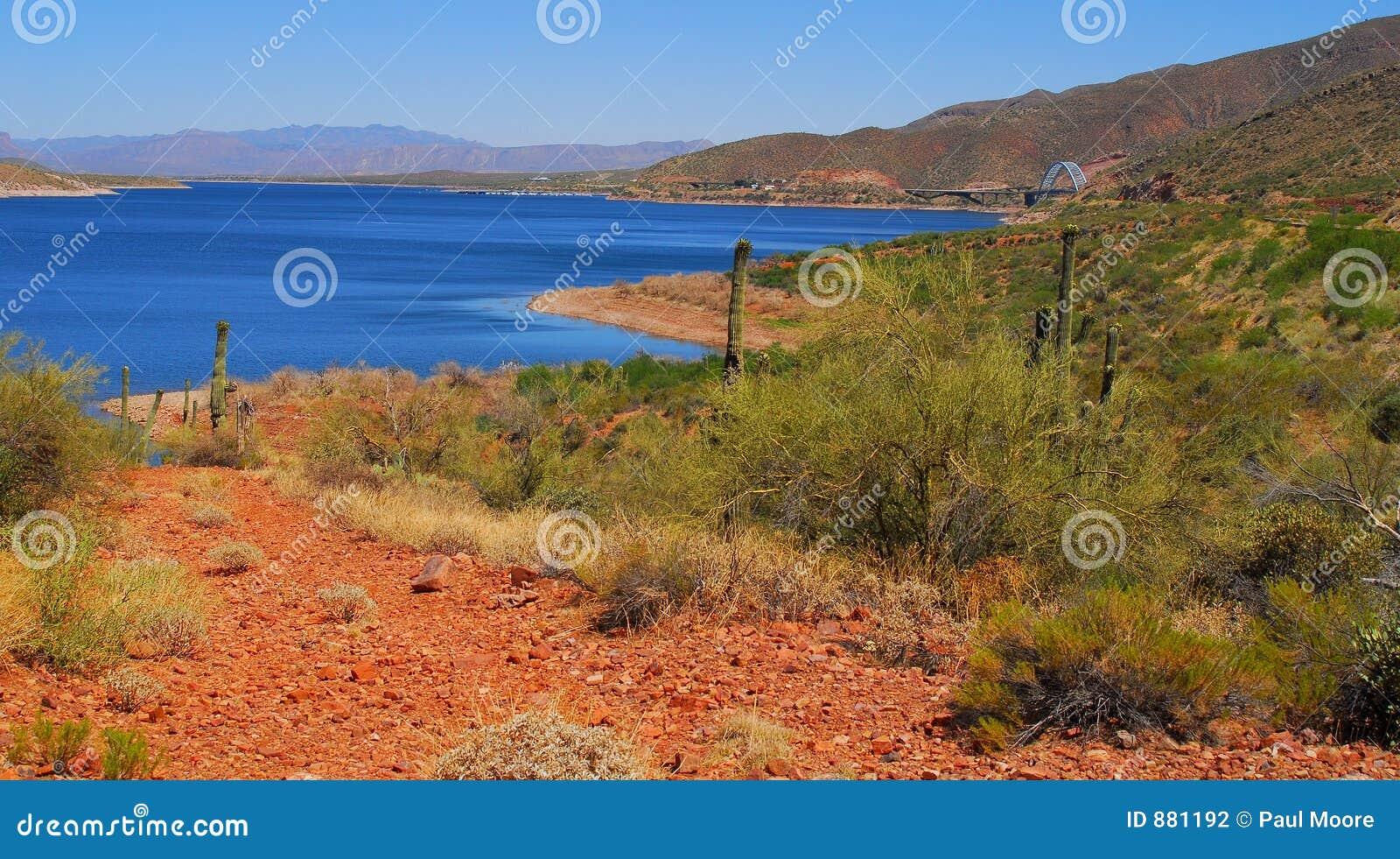 Lake pustyni 2