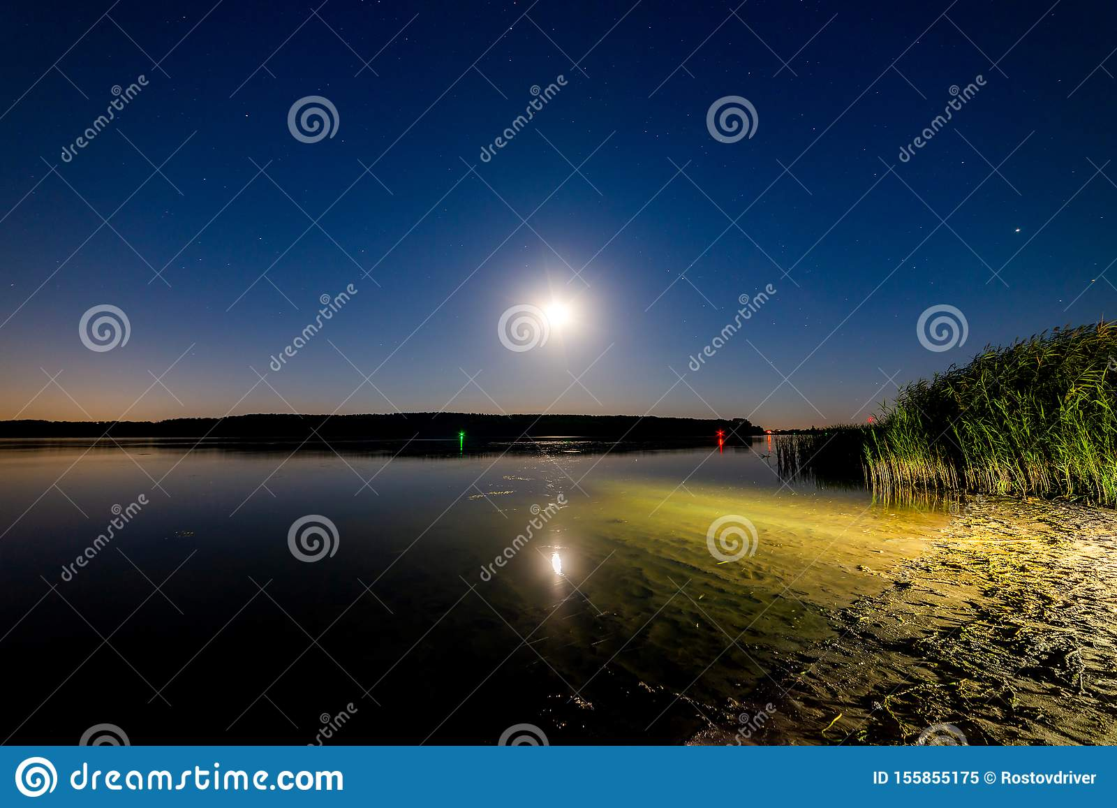 Lake or river sand shore with trees and dark blue starry sky and city light on background. Tranquil nature night landscape