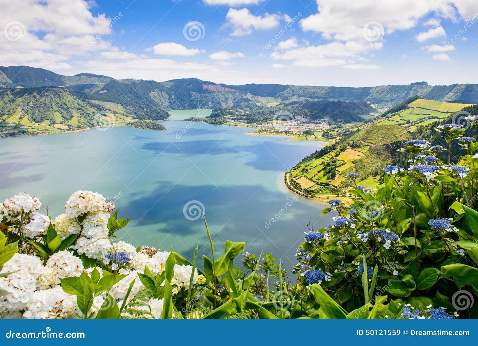 Lake of Sete Cidades with hortensia s, Azores