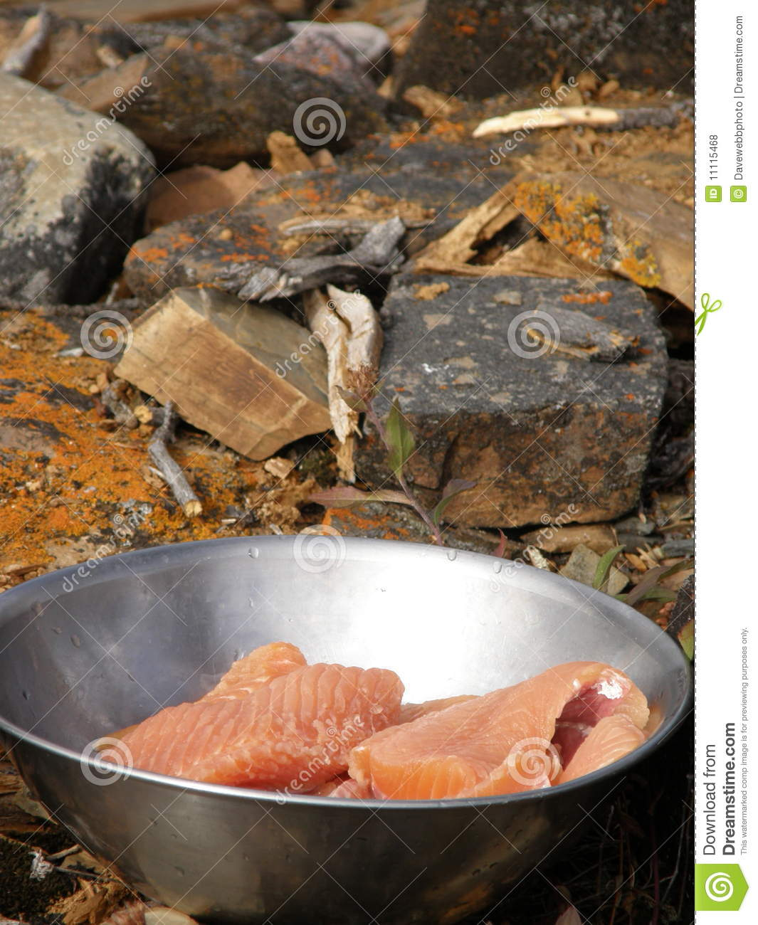 how to cook lake trout fillets