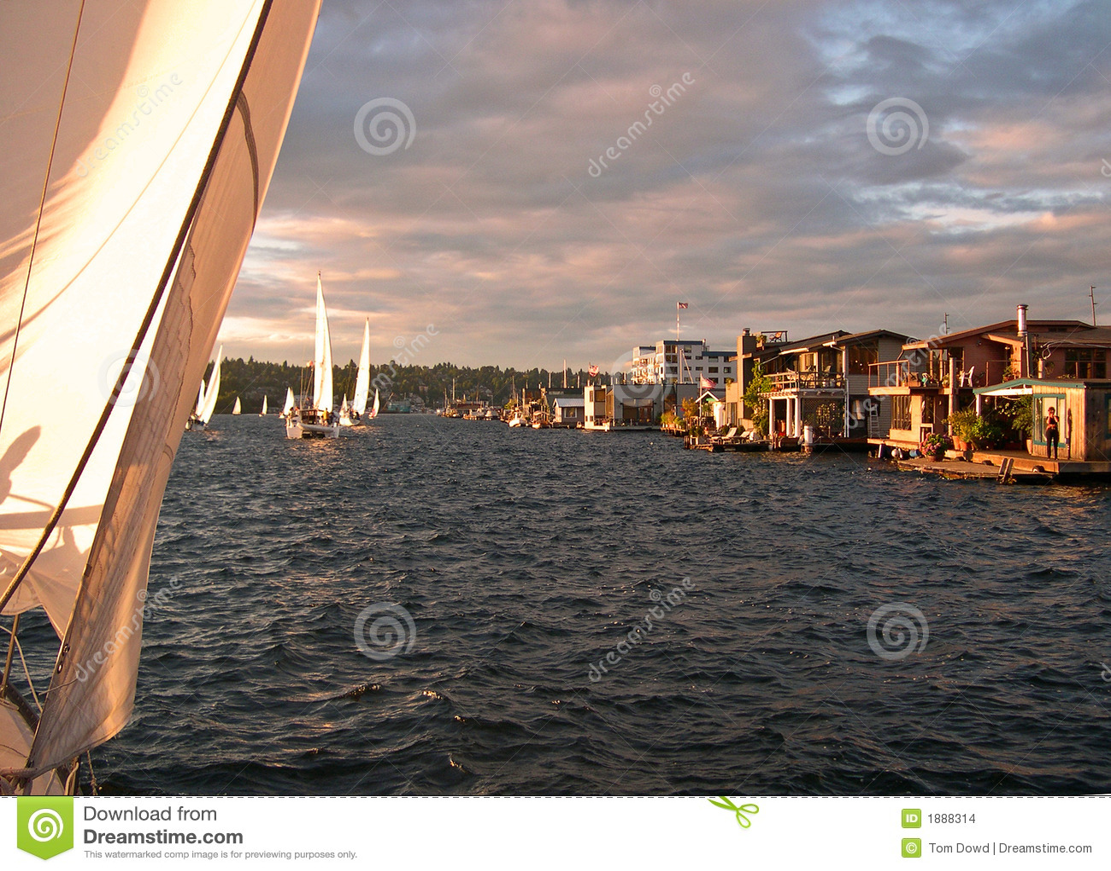Lake Union House Boats