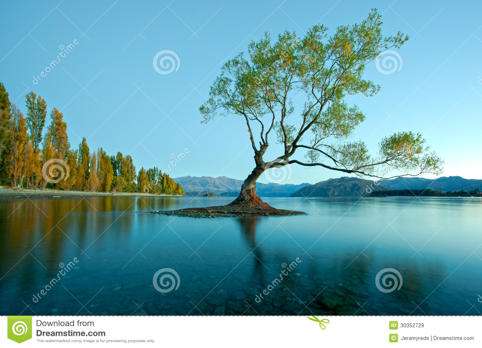 New Zealand Time Image: Lake Wanaka, New Zealand Stock Image. Image Of Bright