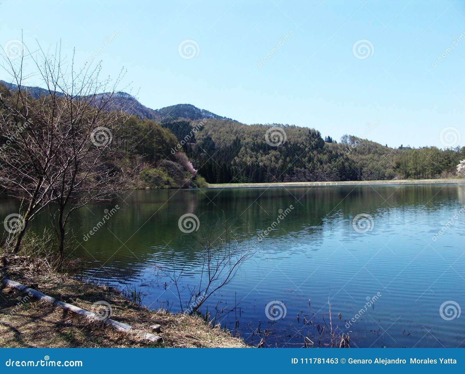 Lakelandscape
