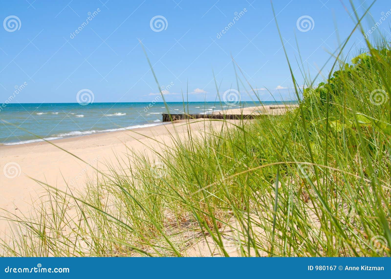 Lakemichigan shoreline