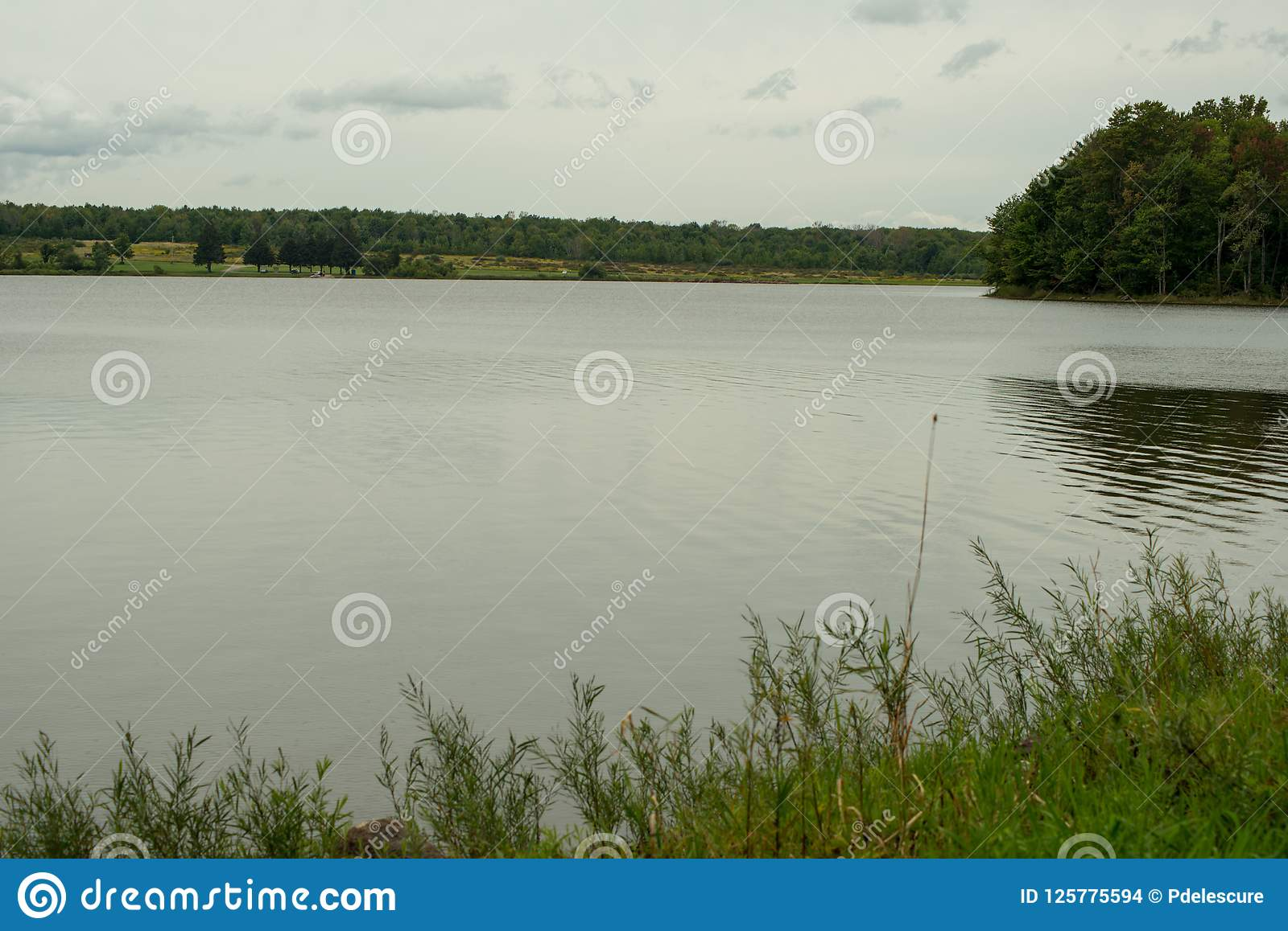 Lakeshore av den Howard Eaton behållaren i nordvästliga Pennsylvania