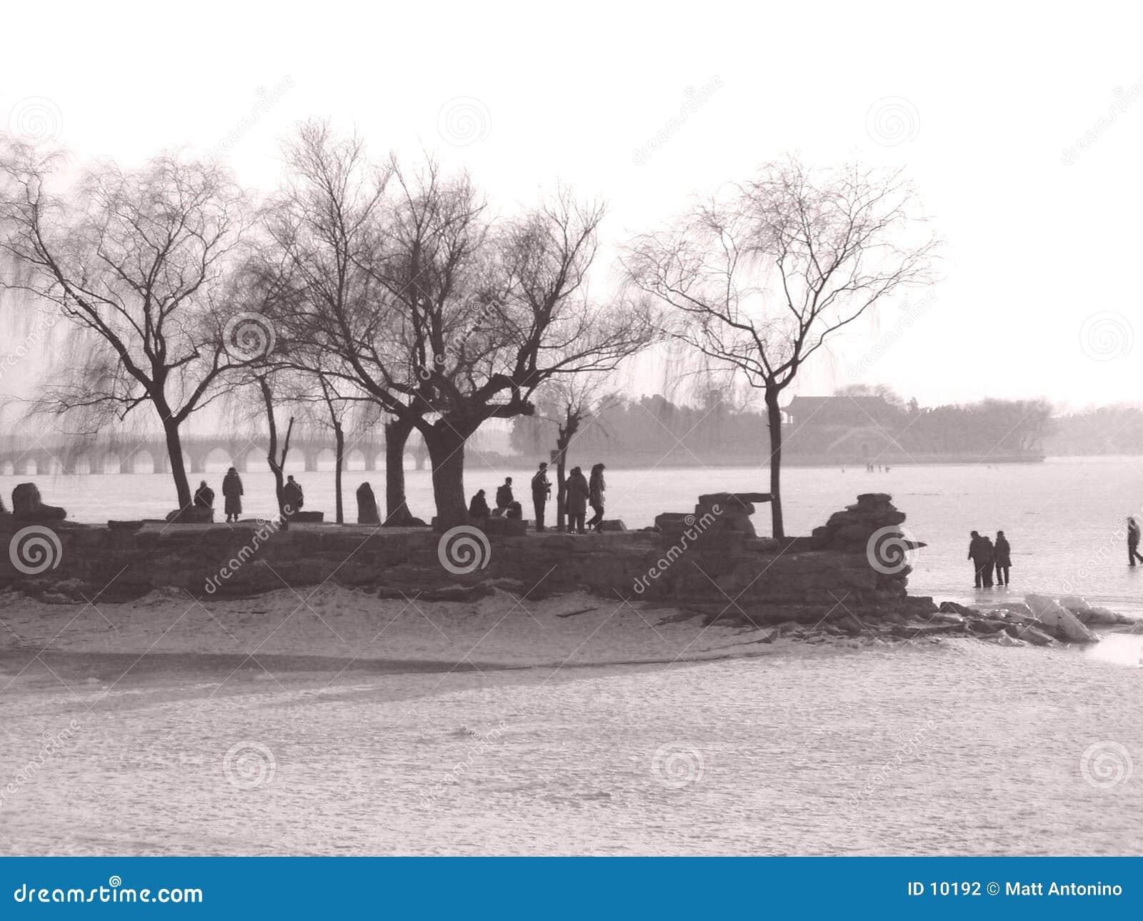 Lakeshore in Cina