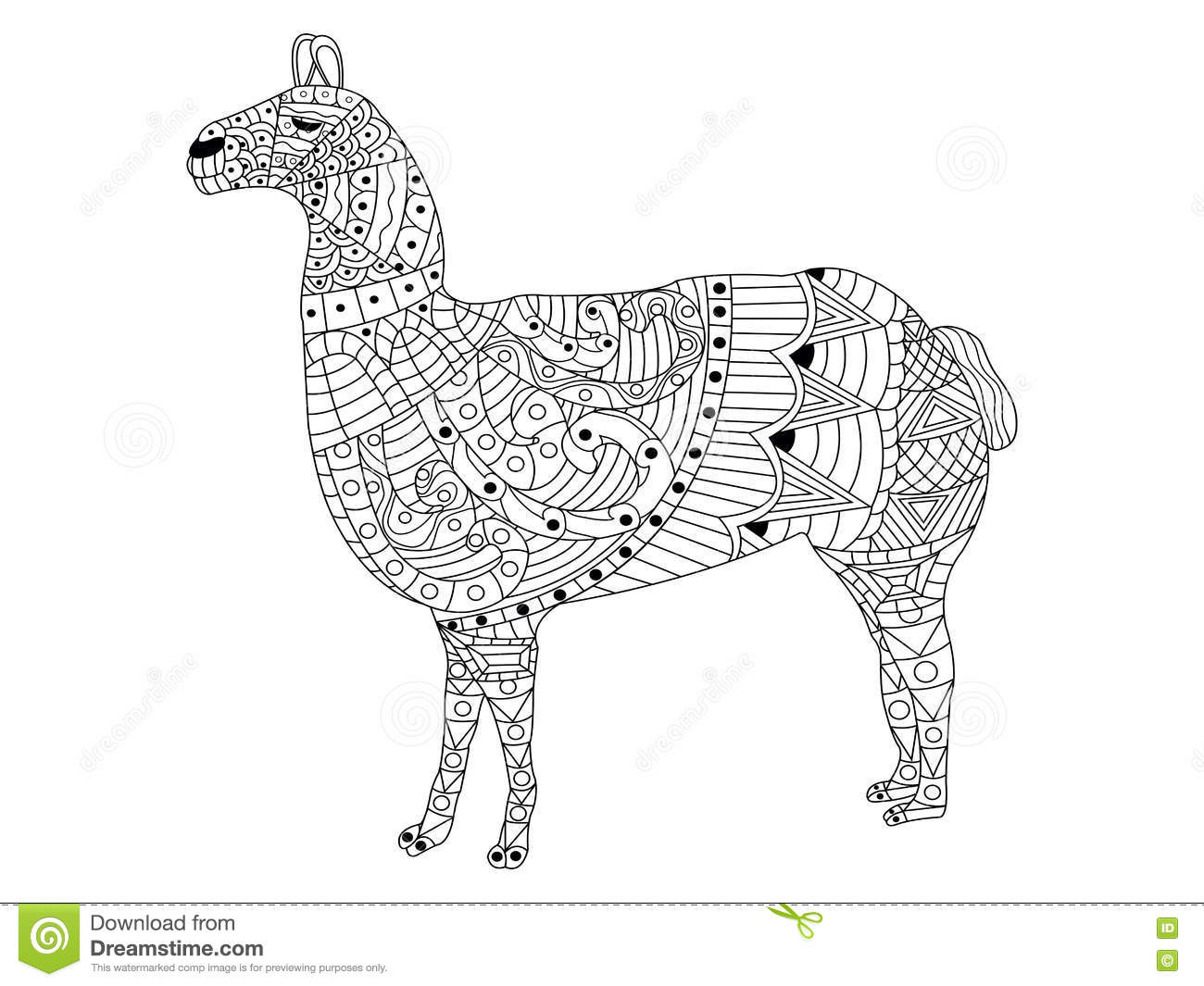 Lama Coloring Vector For Adults Stock Vector Illustration Of
