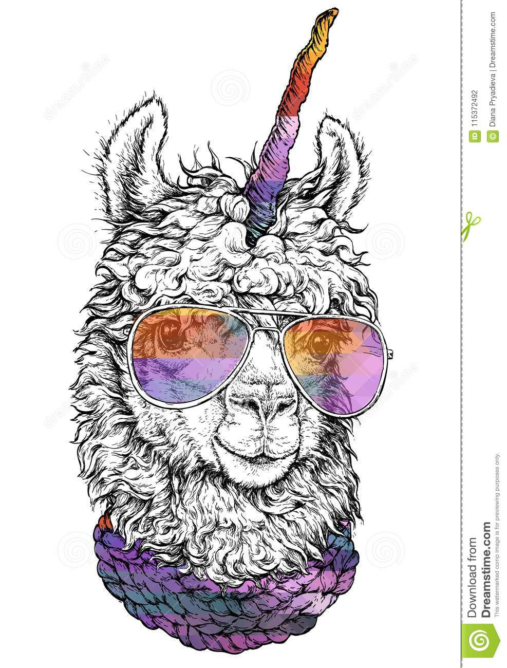 Lama Llamacorn In Eyeglasses Hipster Style Drawing Isolated On