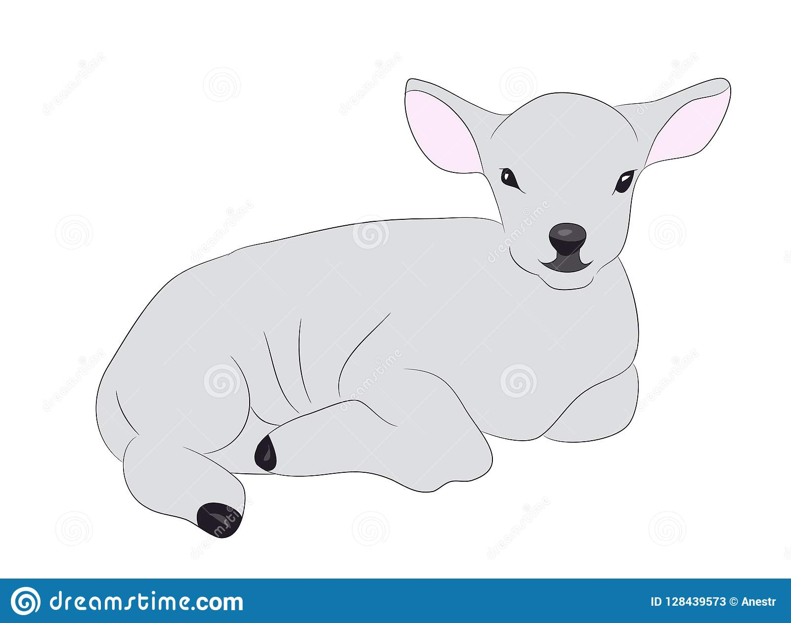 Lamb Is Drawing Color Vector Stock Vector Illustration Of Mammal