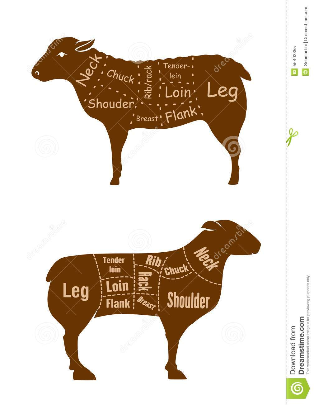 lamb or mutton butcher cuts detailed diagram stock vector. Black Bedroom Furniture Sets. Home Design Ideas