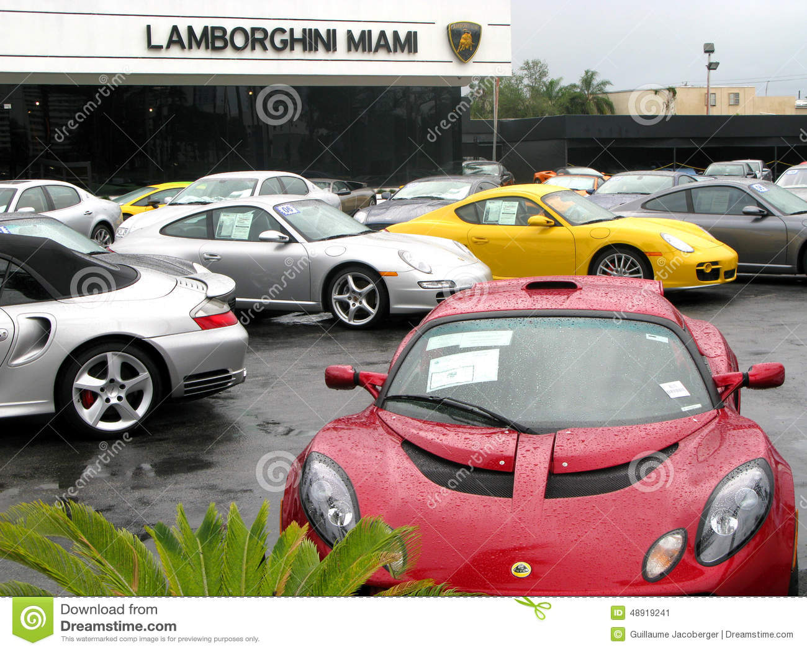 Lamborghini Car Store Id 233 E D Image De Voiture