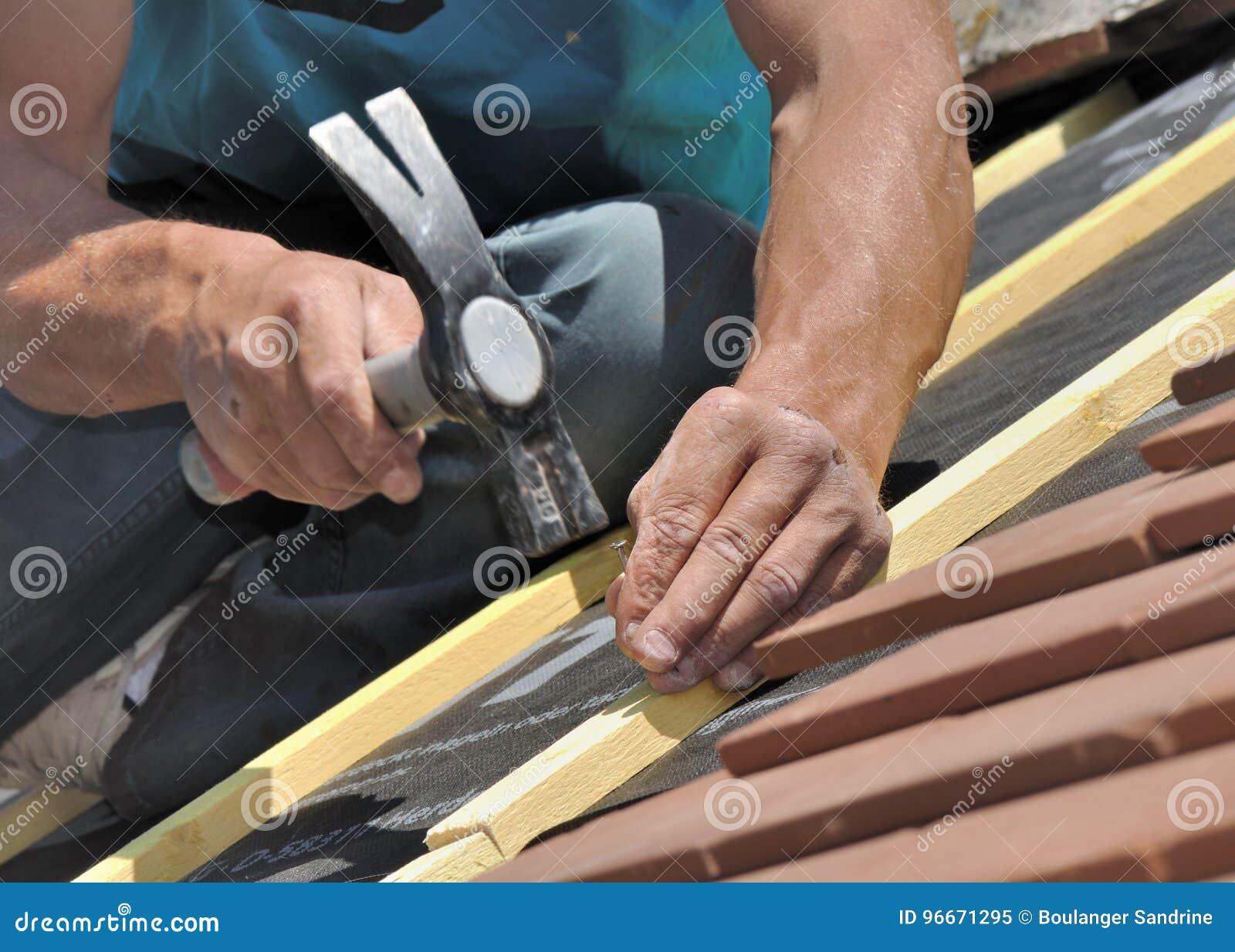 Lamelles de clou sur un toit