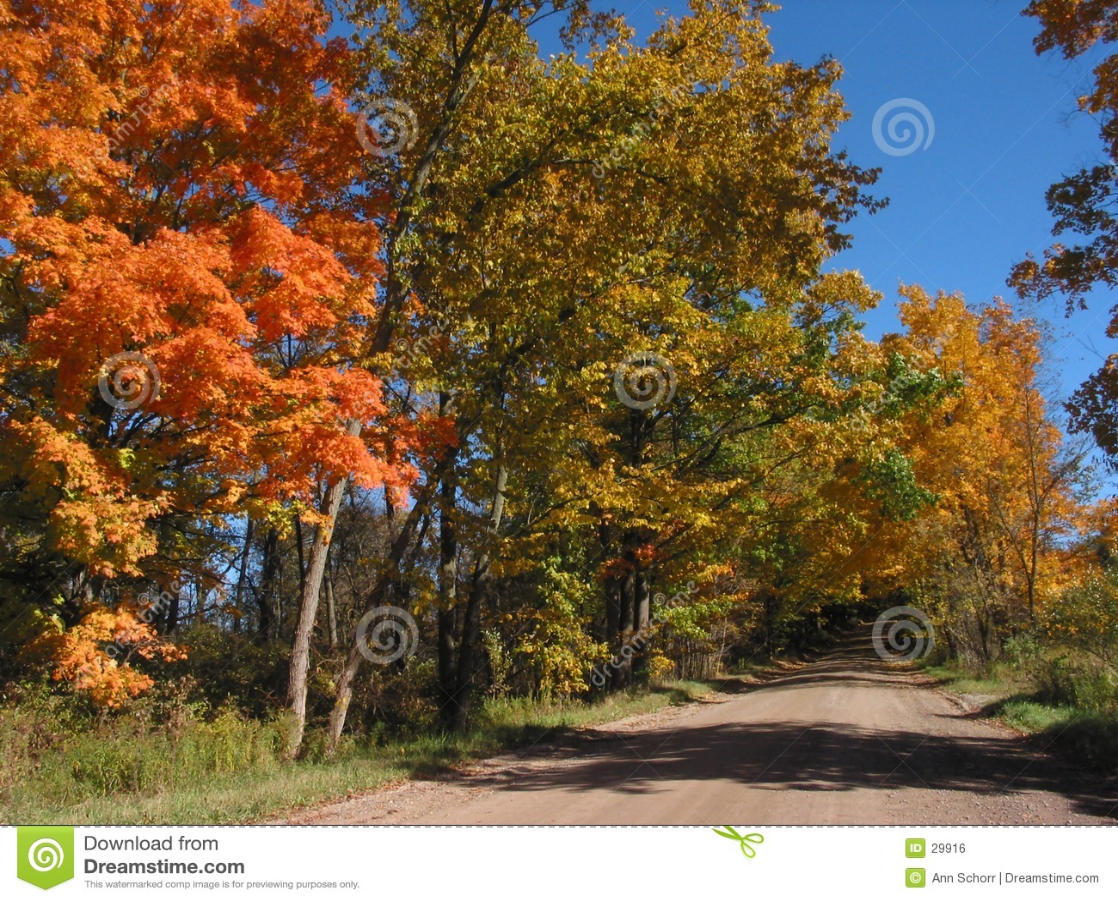 Lames d automne dans l â 04_10_2_034 d horizontal