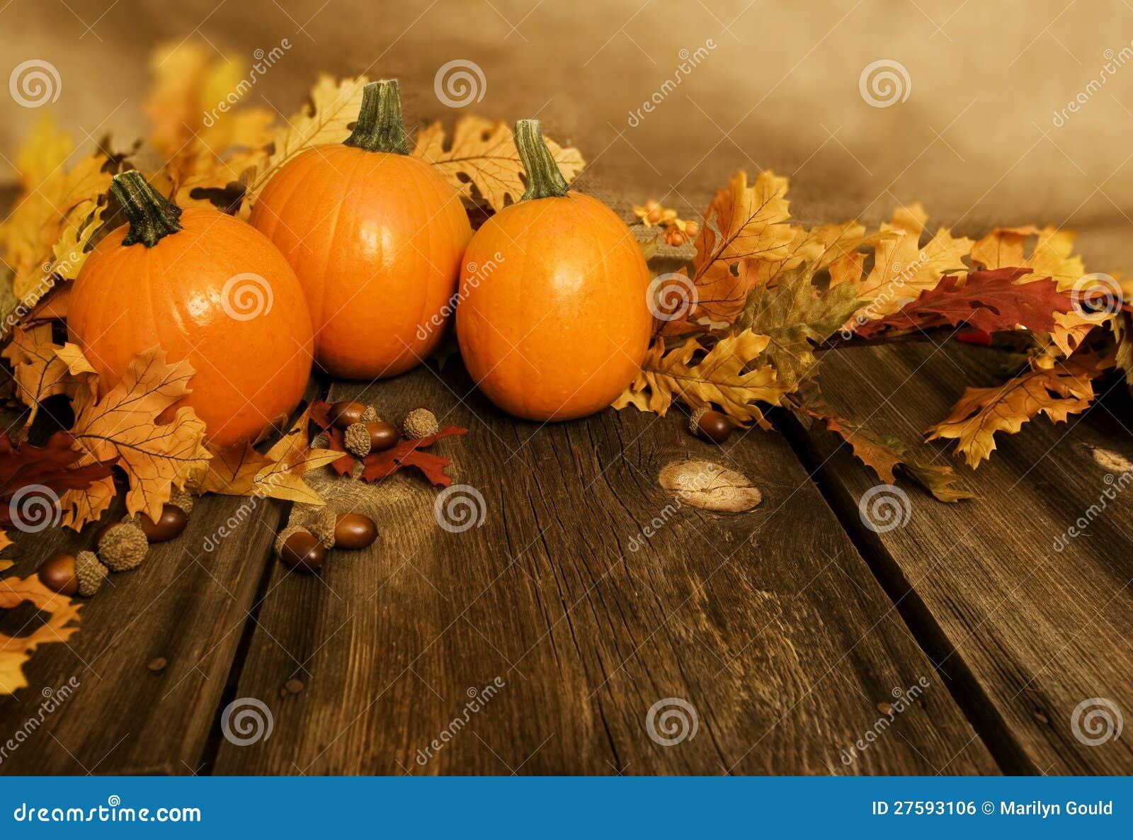Lames d automne de potirons