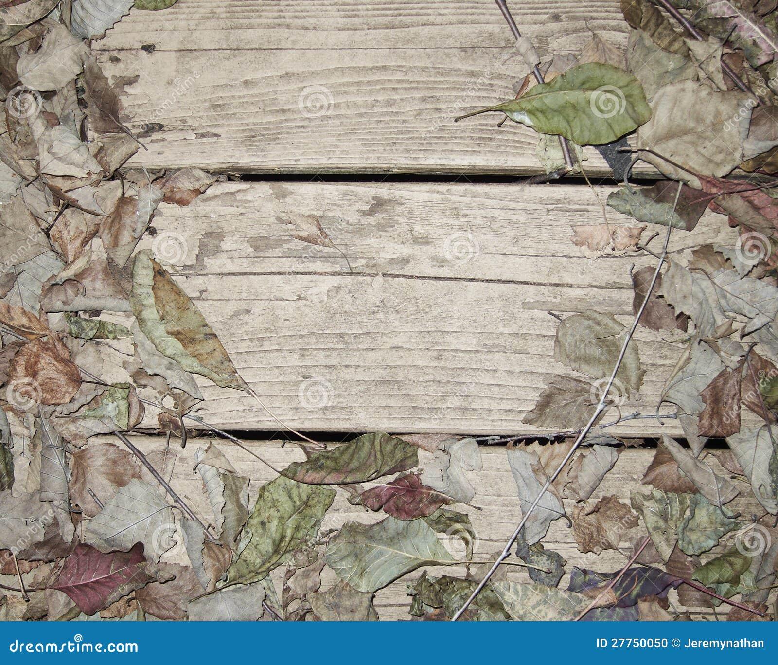 Lames d automne tombées sur le porche