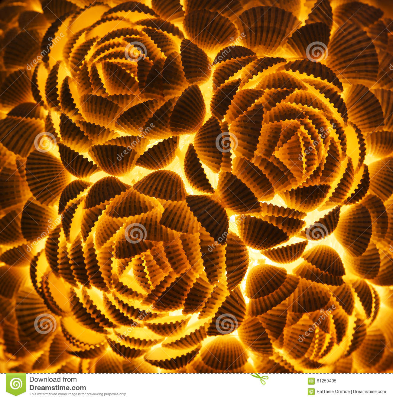Lamp made of shells stock photo image 61259495 for What are shells made of