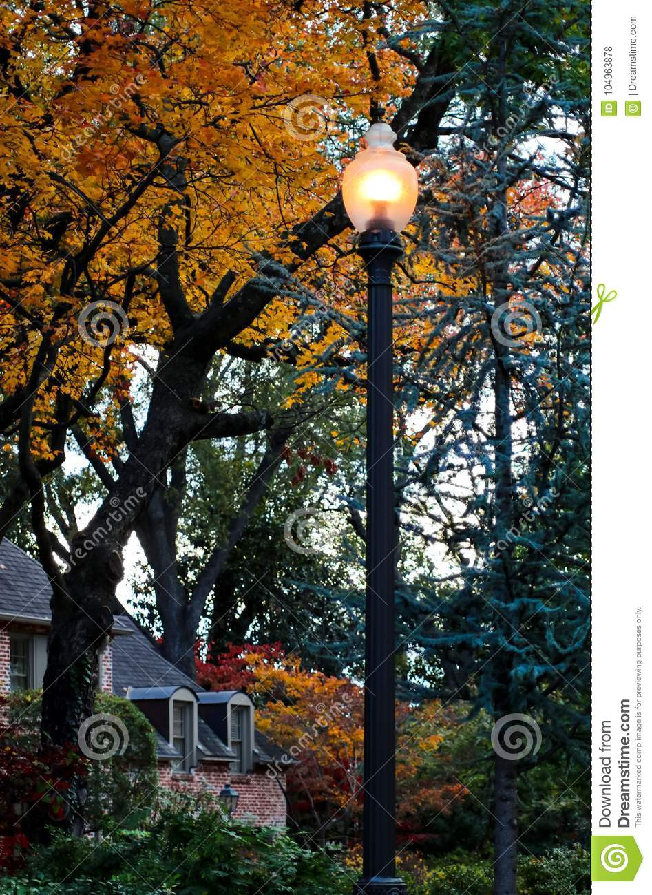 Lamp post in autumn neighborhood with house and colorful trees - one with a squirrel in it